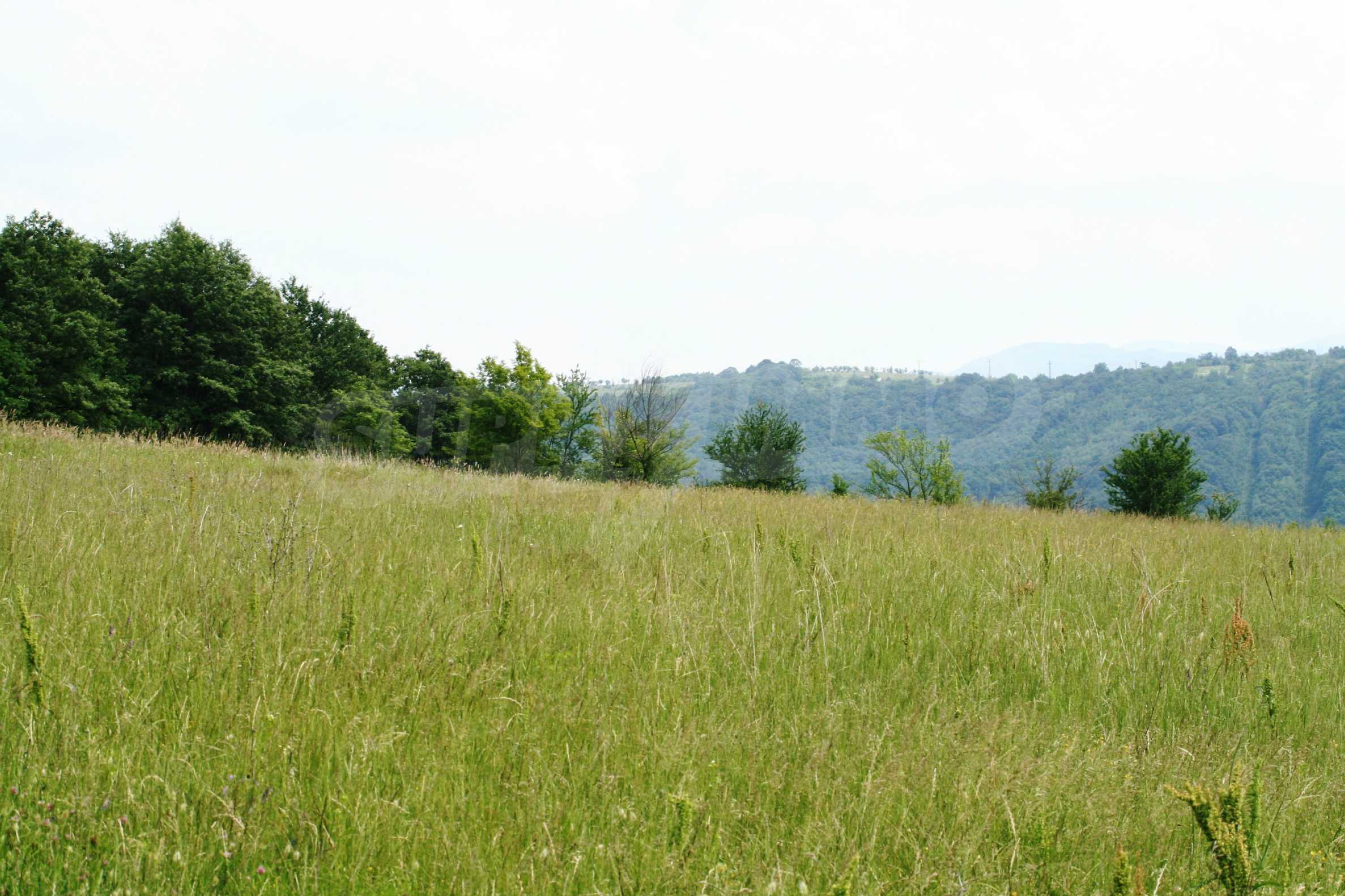Spacious plot of agricultural land with potential near Gabrovo 6