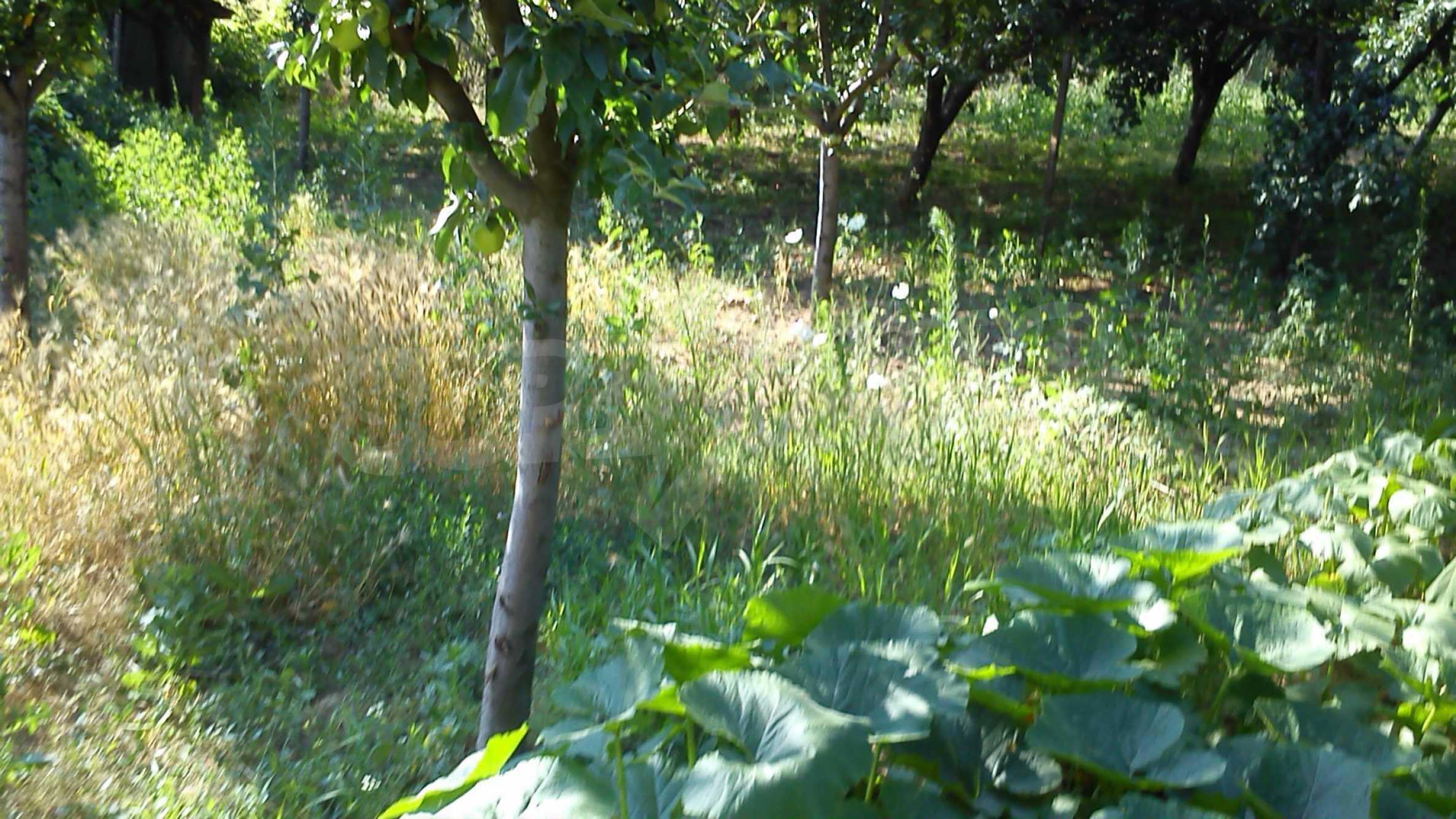 3-storey villa with garden in picturesque village near Vidin 19