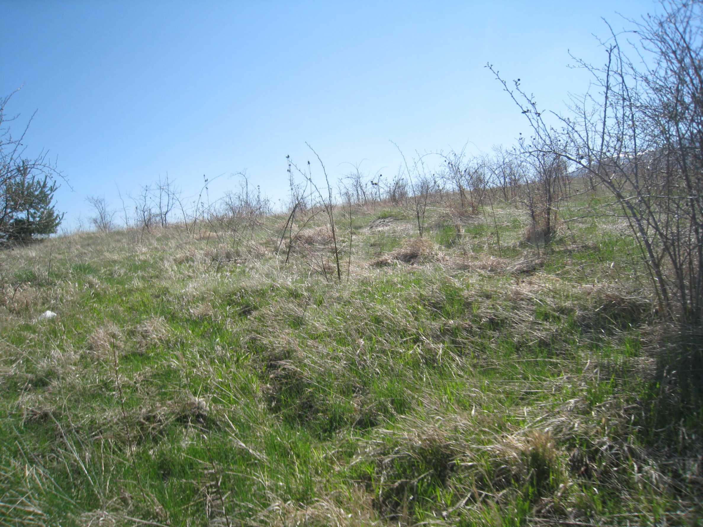 Regulated plot for construction of private house or villa near Sofia 1