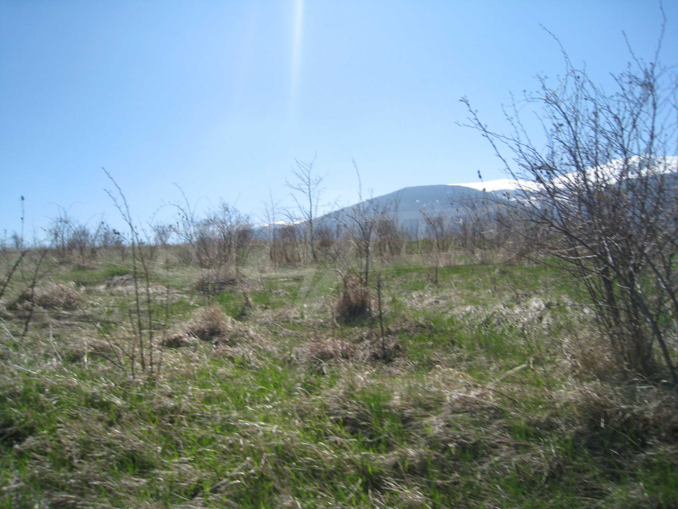 Regulated plot for construction of private house or villa near Sofia 2