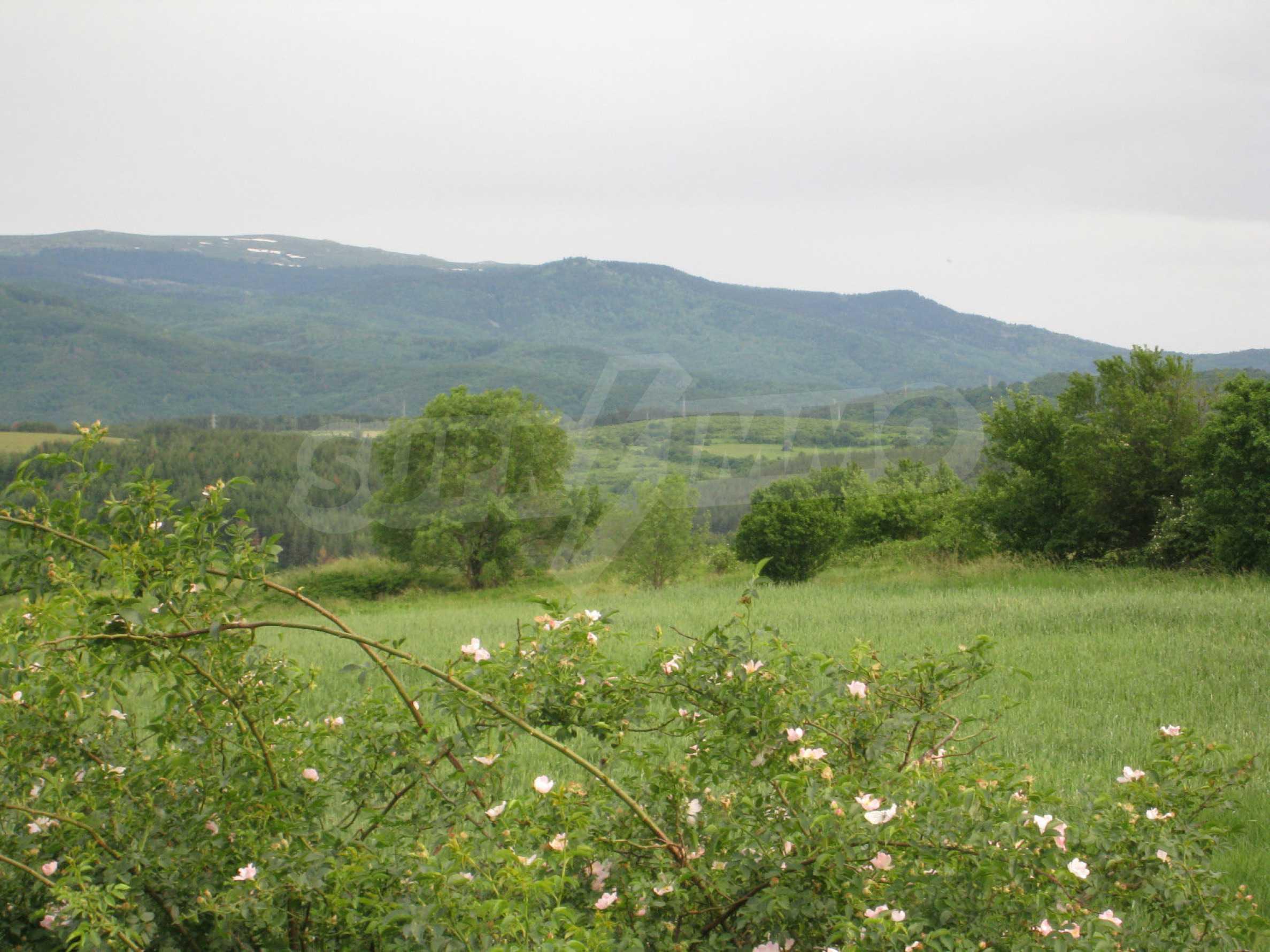 Agricultural land at asphalt road in Suhodol 11