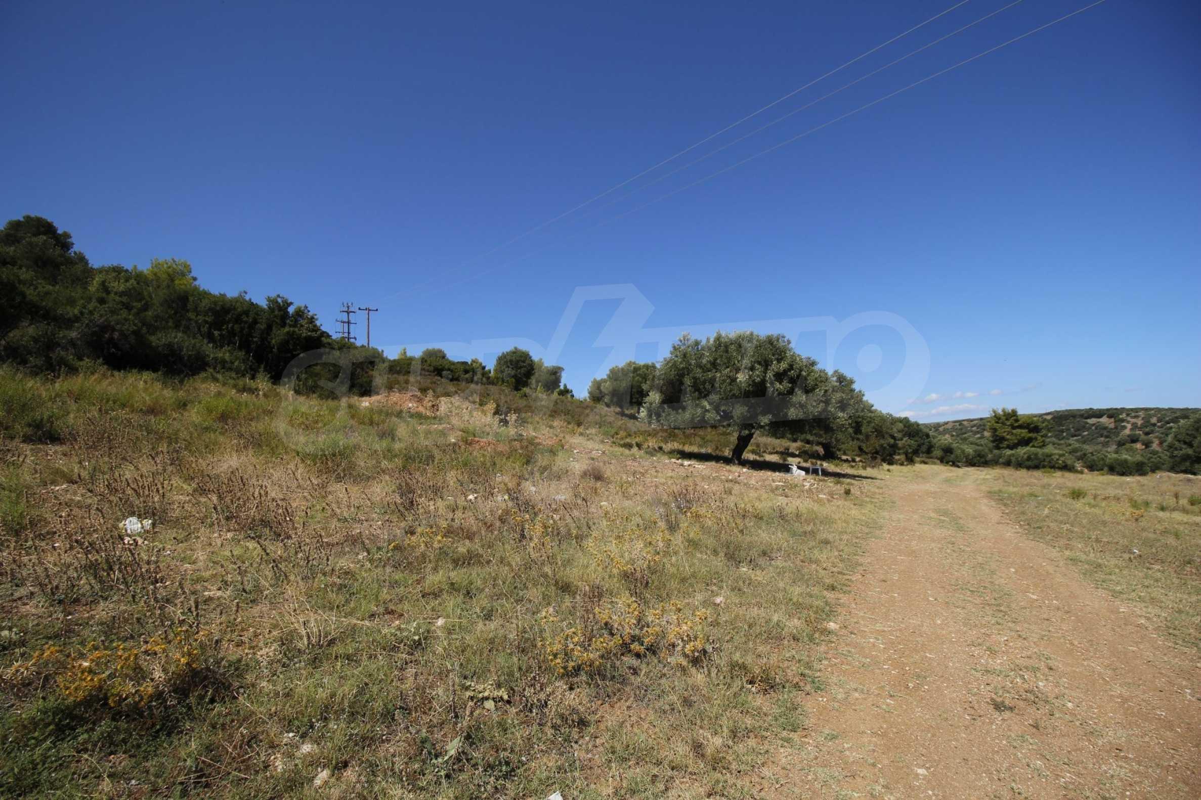 Земеделска земя  в  Никити 15