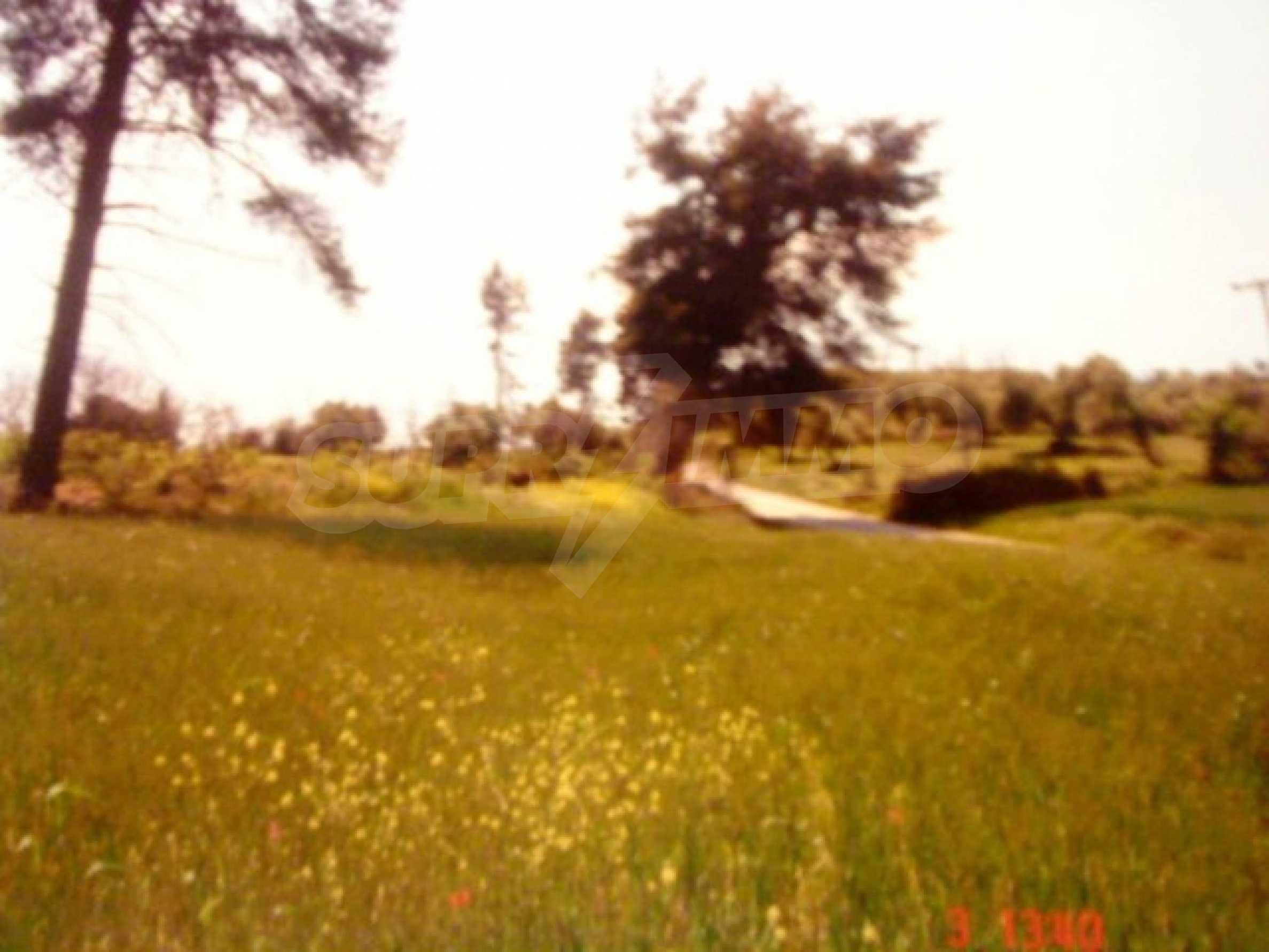 Земя  в  Пефкохори