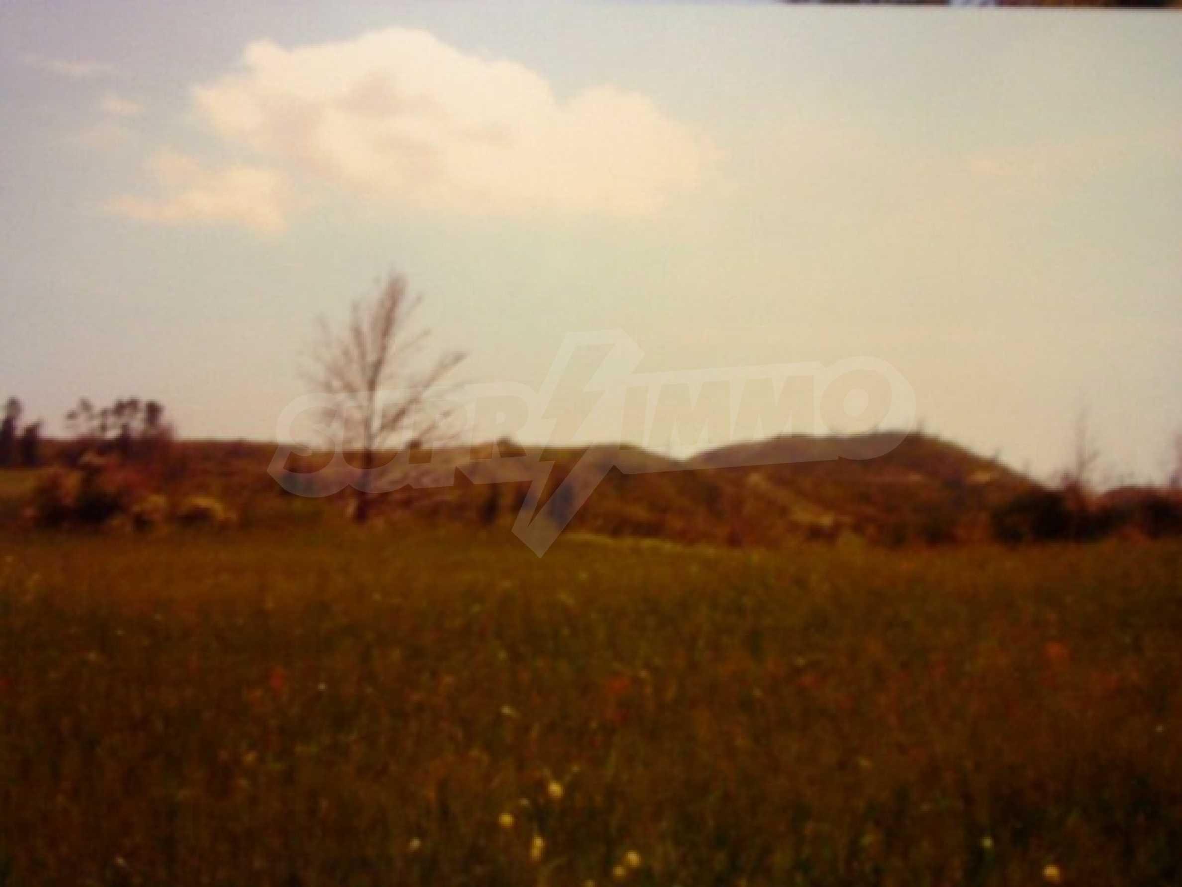 Земя  в  Пефкохори 1
