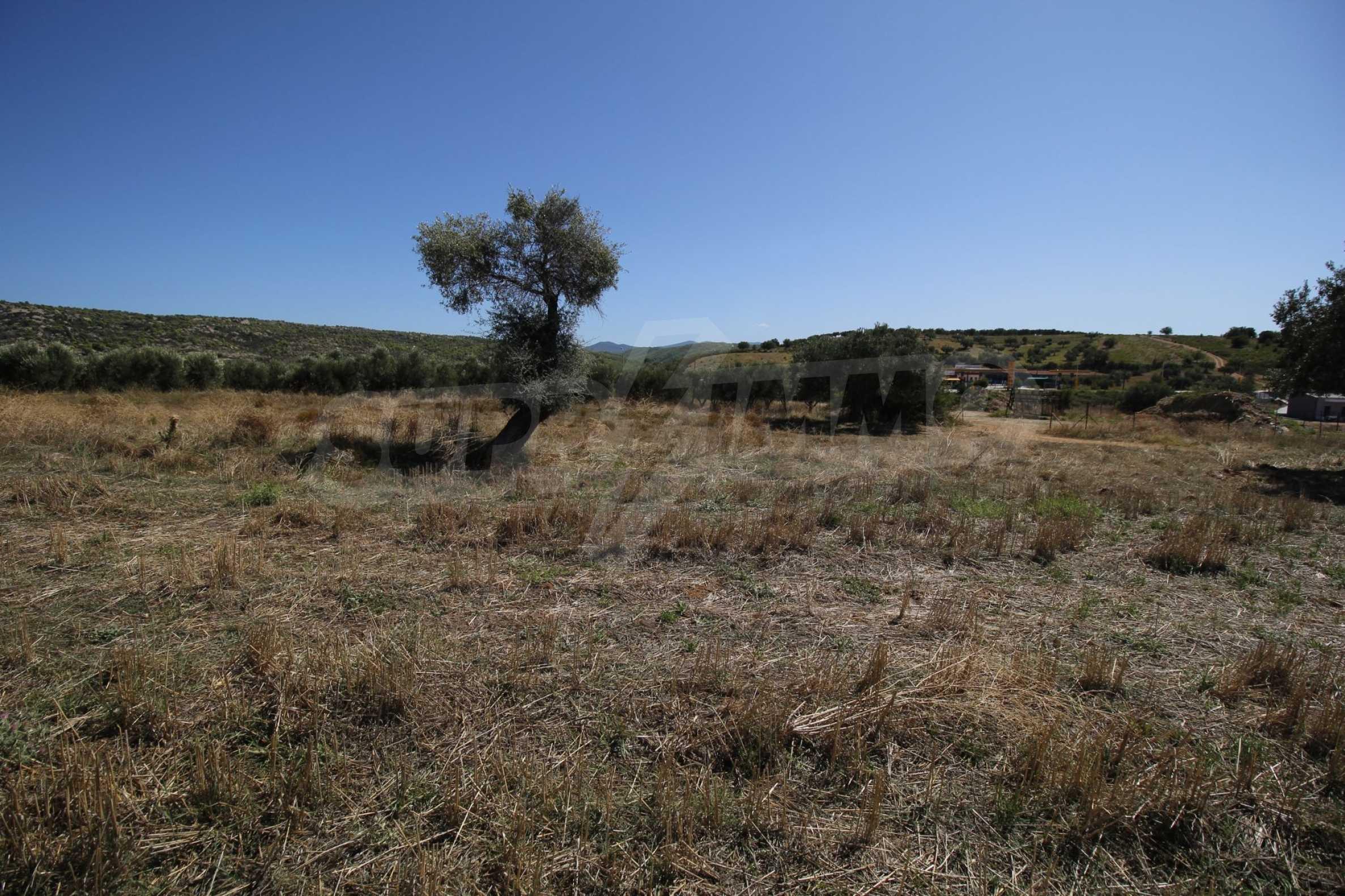 Земеделска земя  в  Никити 14