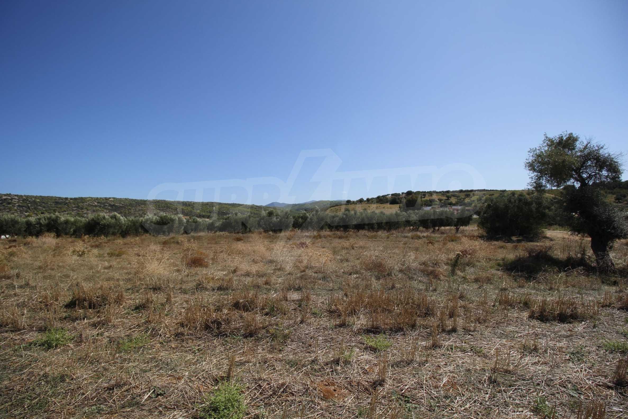 Земеделска земя  в  Никити 22
