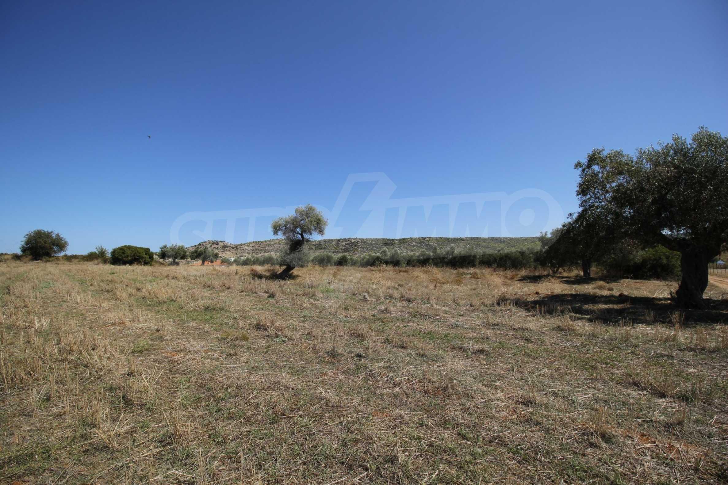 Земеделска земя  в  Никити 8