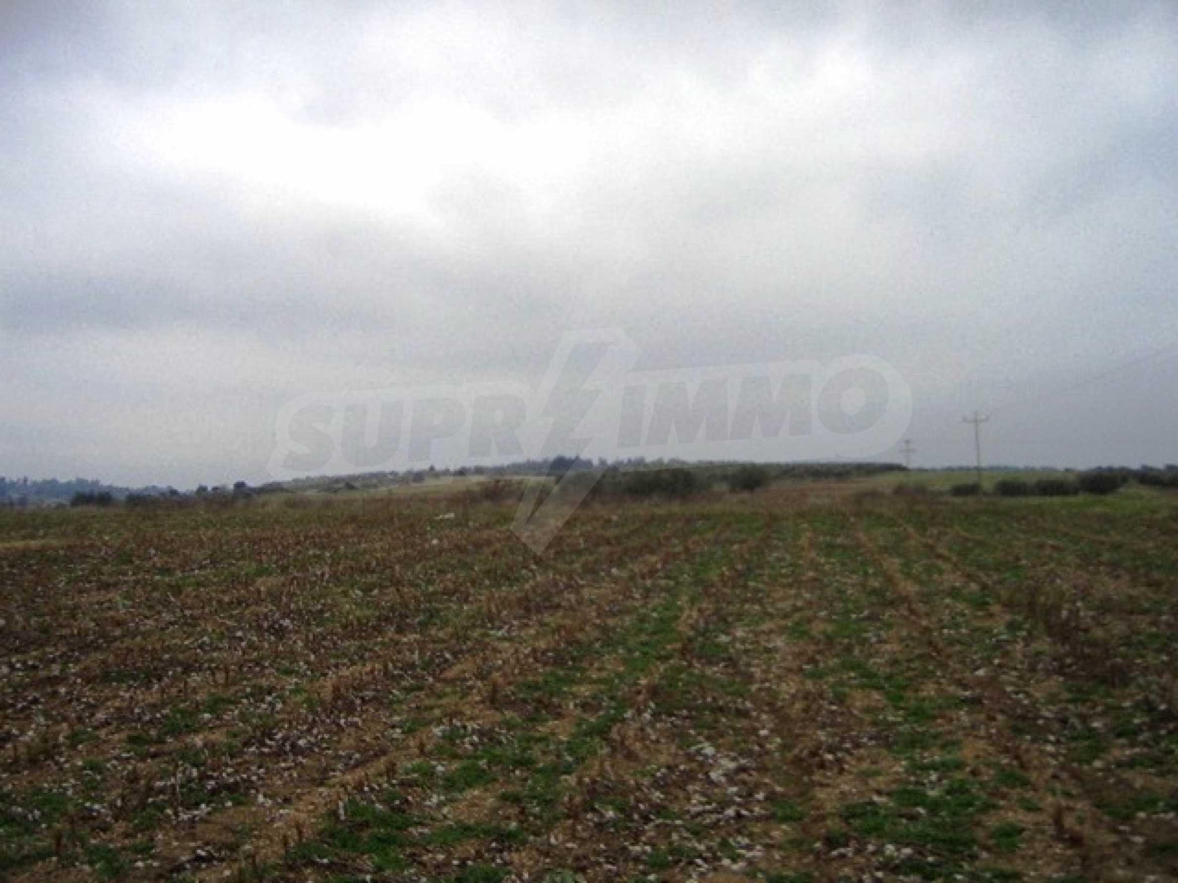 Земеделска земя  в  Афитос 3
