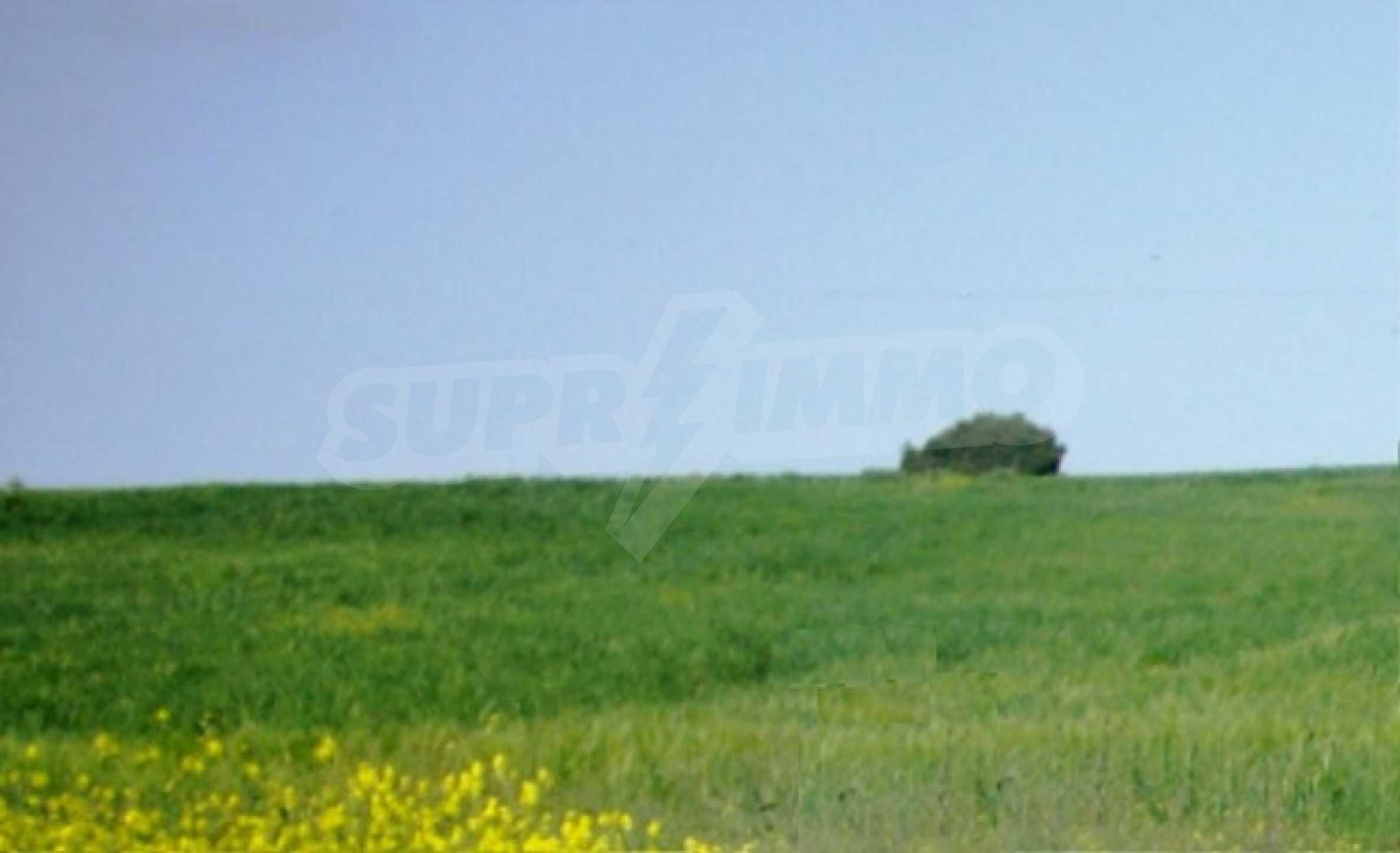 Земеделска земя  в  Сани