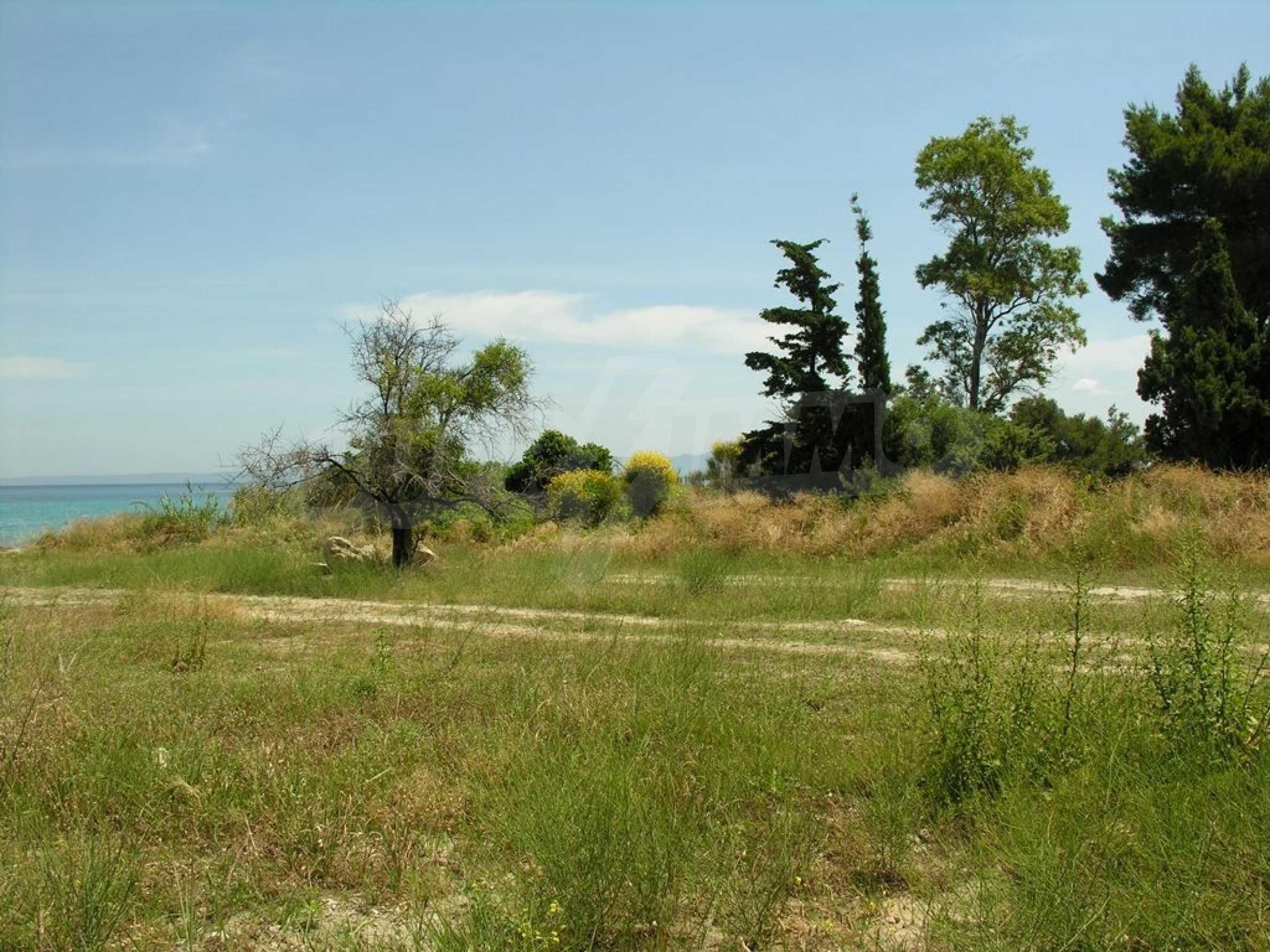 Земеделска земя  в  Полихроно 1