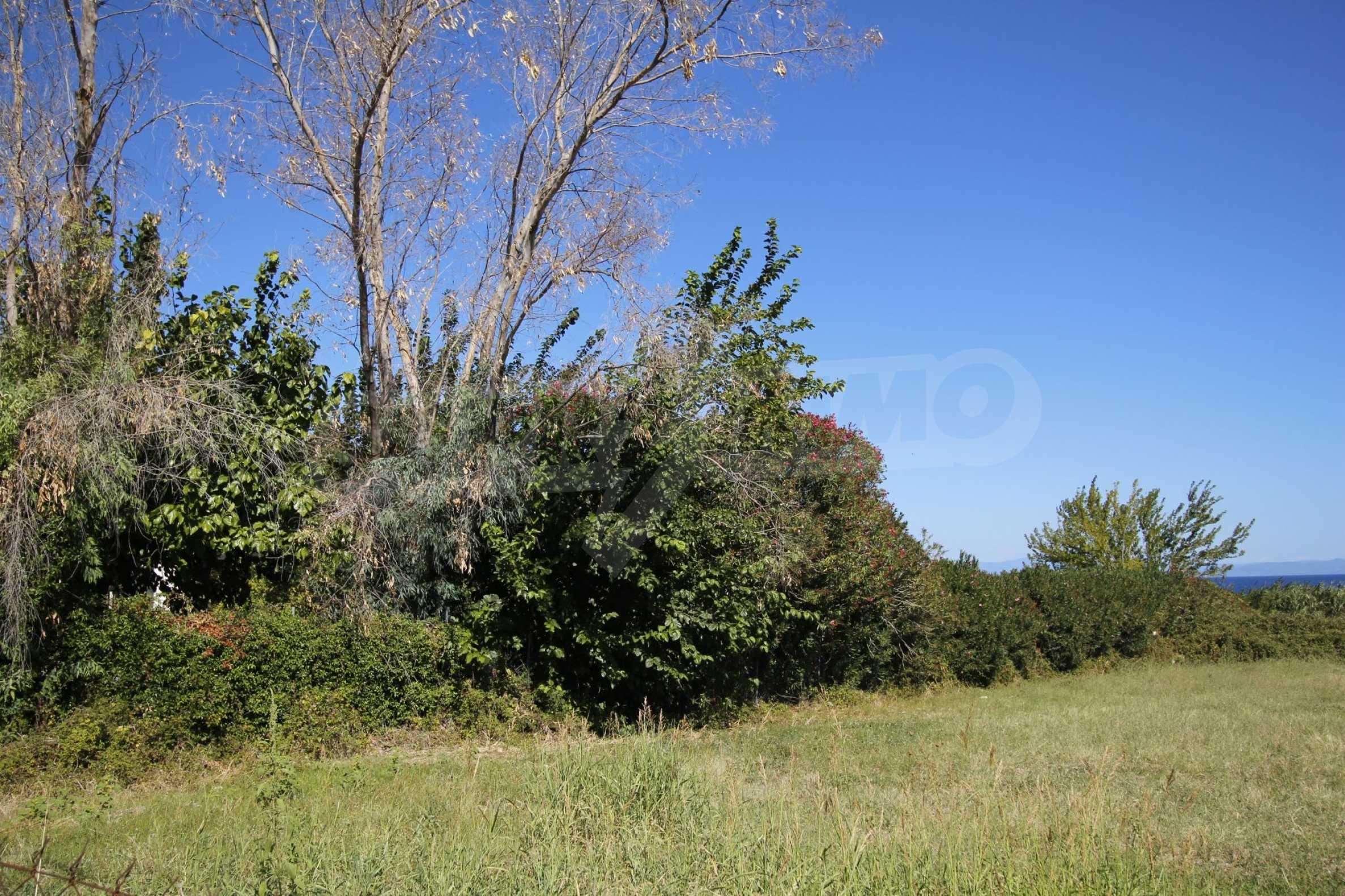 Земеделска земя  в  Полихроно 5