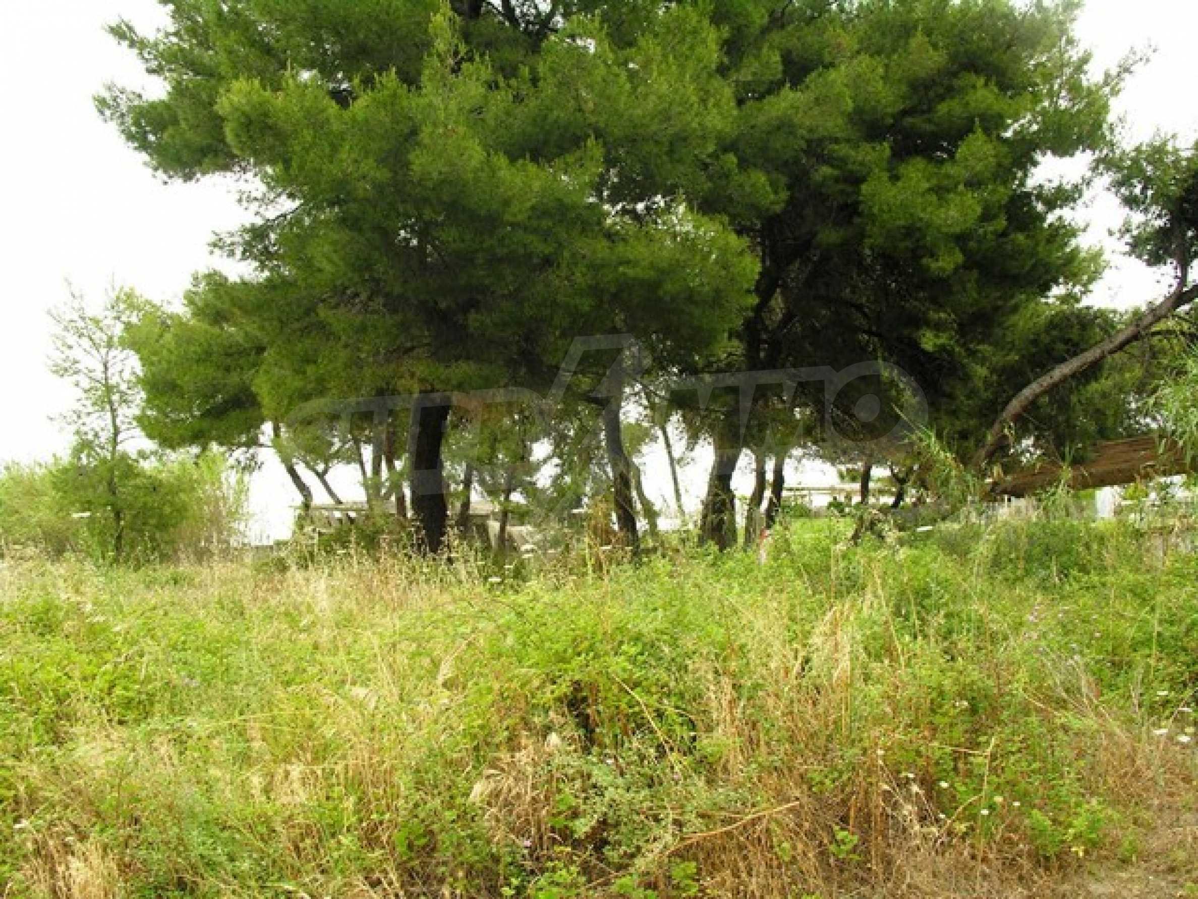 Земеделска земя  в  Ханиоти 6