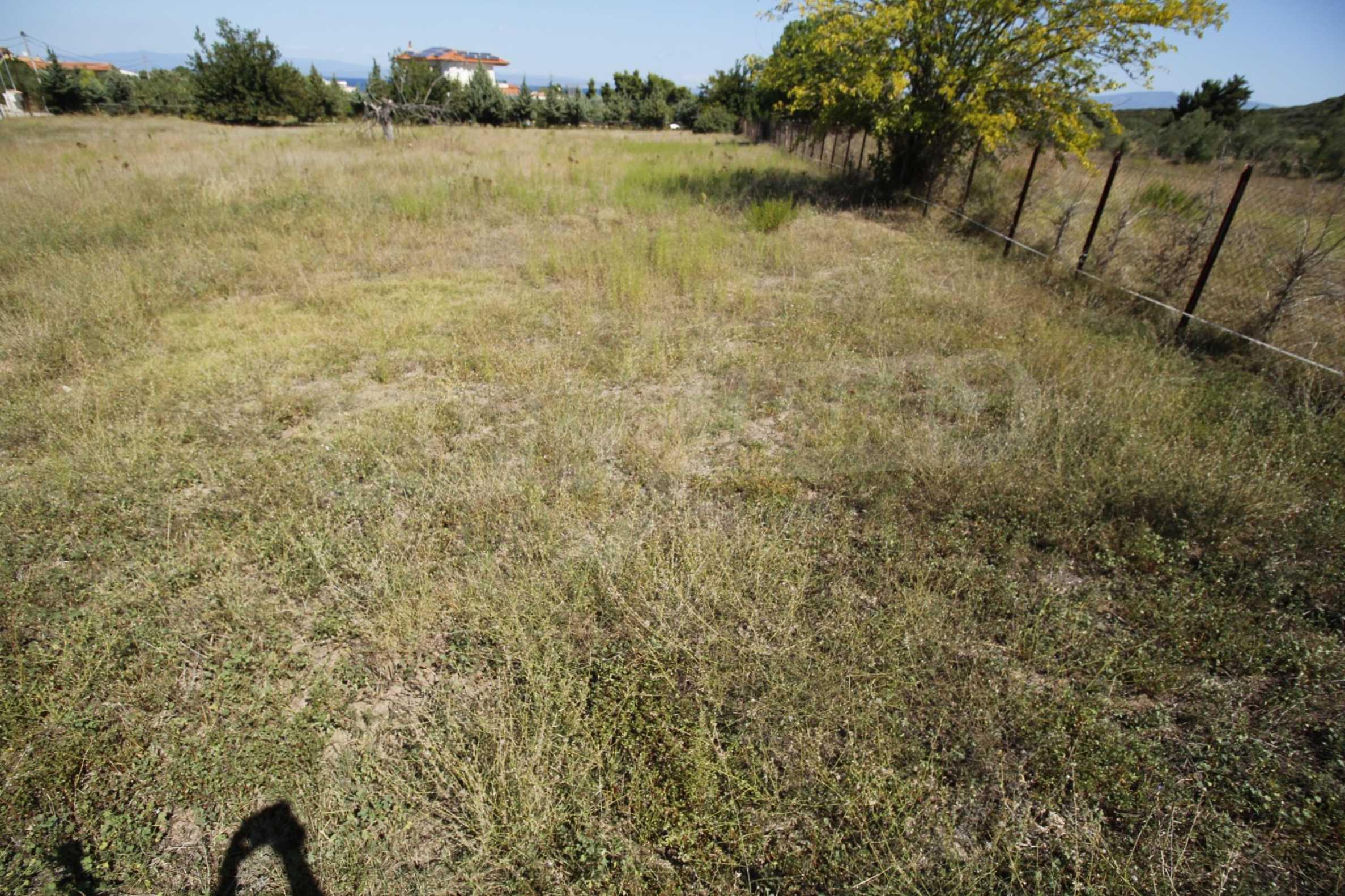 Земеделска земя  в  Ханиоти 14