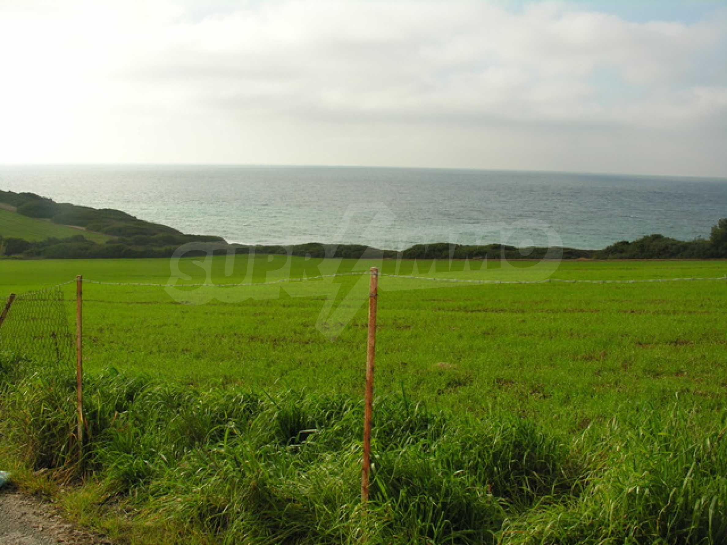 Земеделска земя  в  Потидея 1