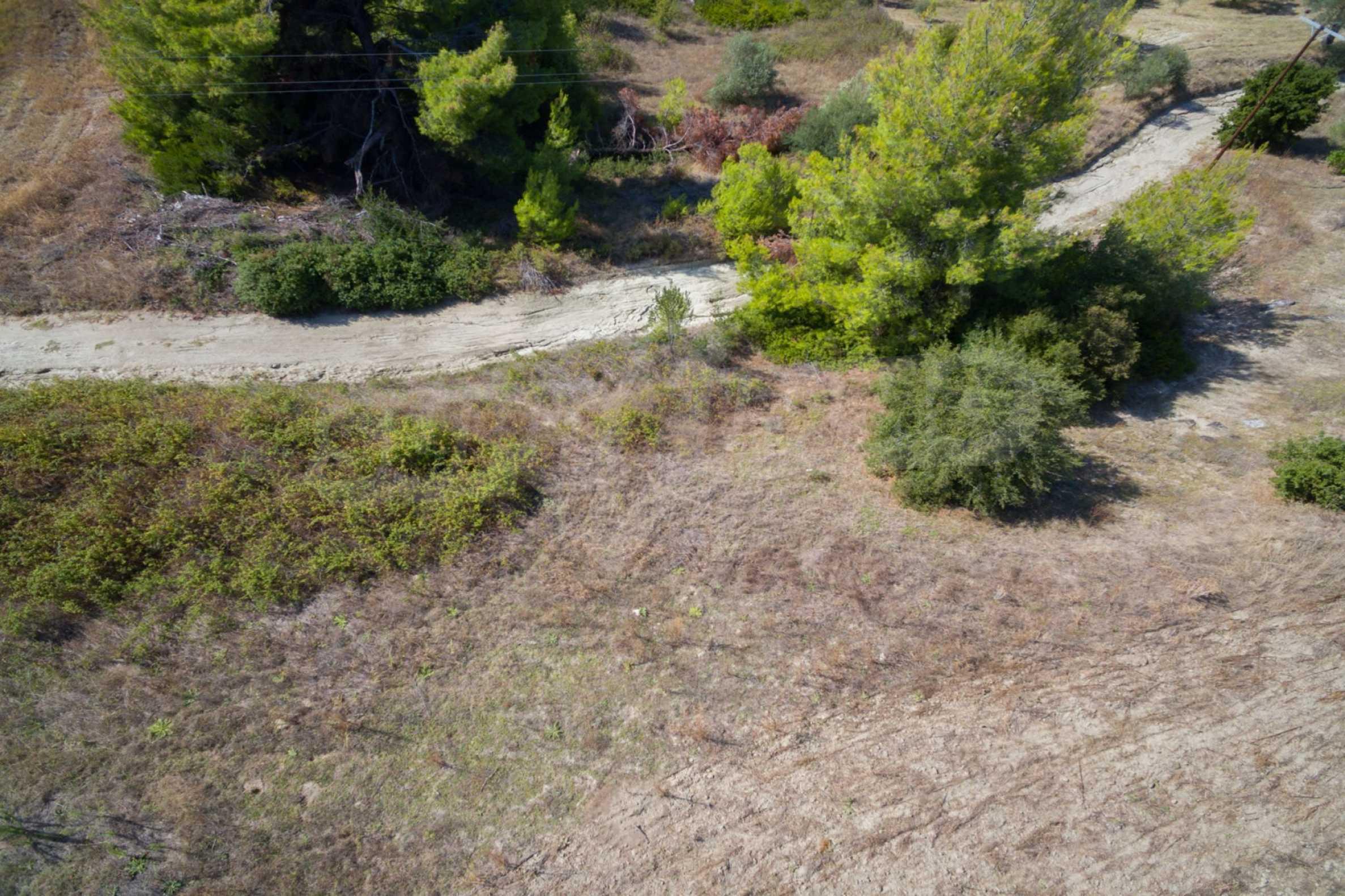 Земеделска земя  в  Сивири 18