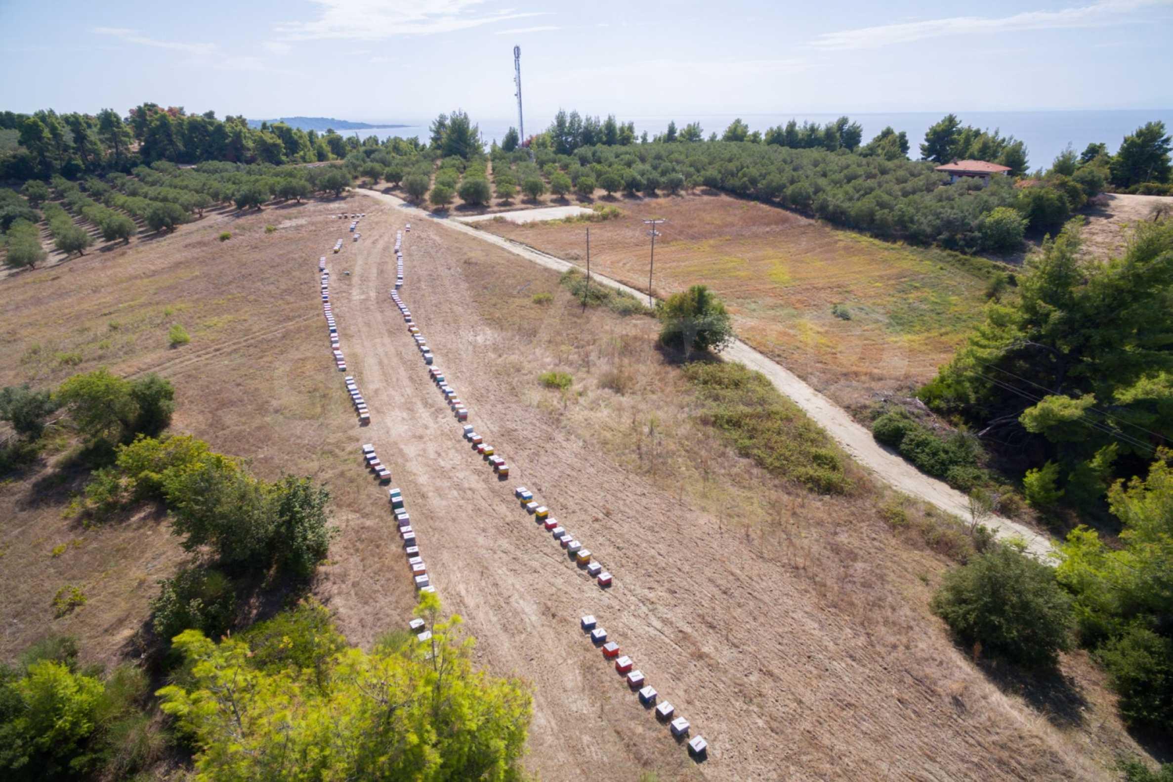 Земеделска земя  в  Сивири 27