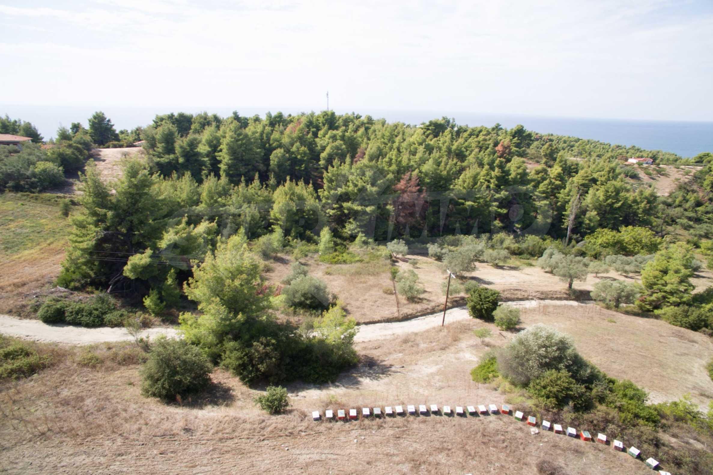 Земеделска земя  в  Сивири 30