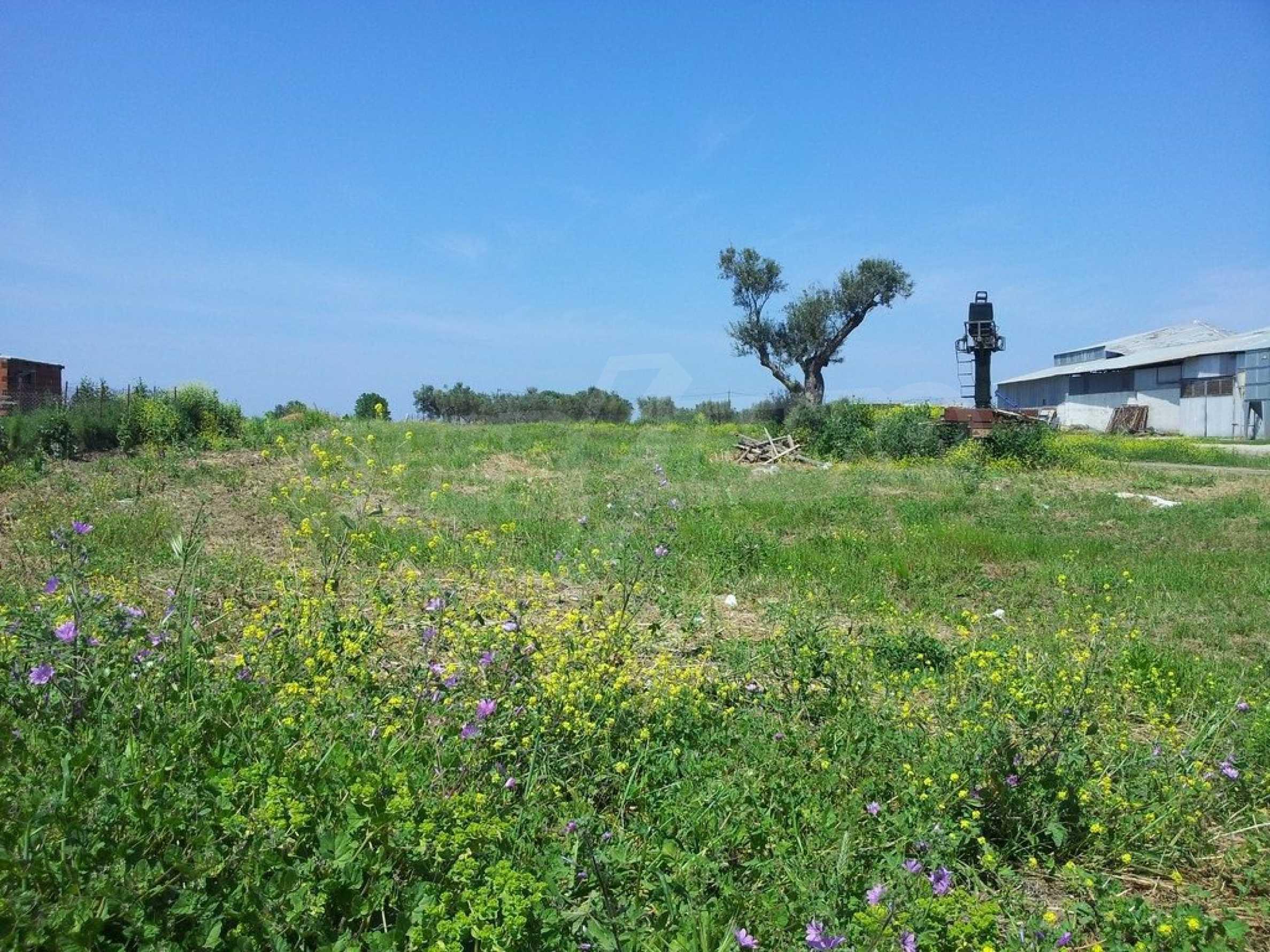 Земеделска земя  в  Афитос 2