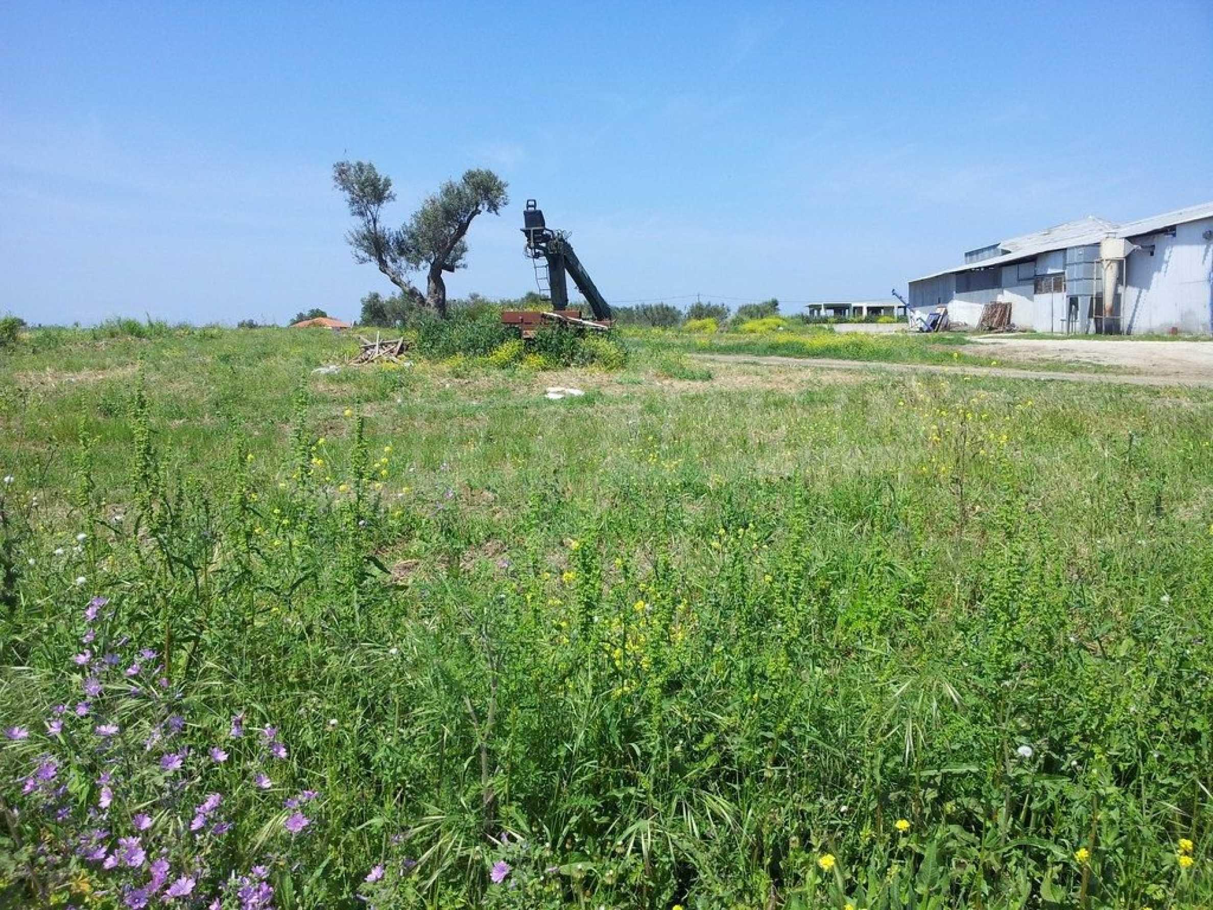 Земеделска земя  в  Афитос 5