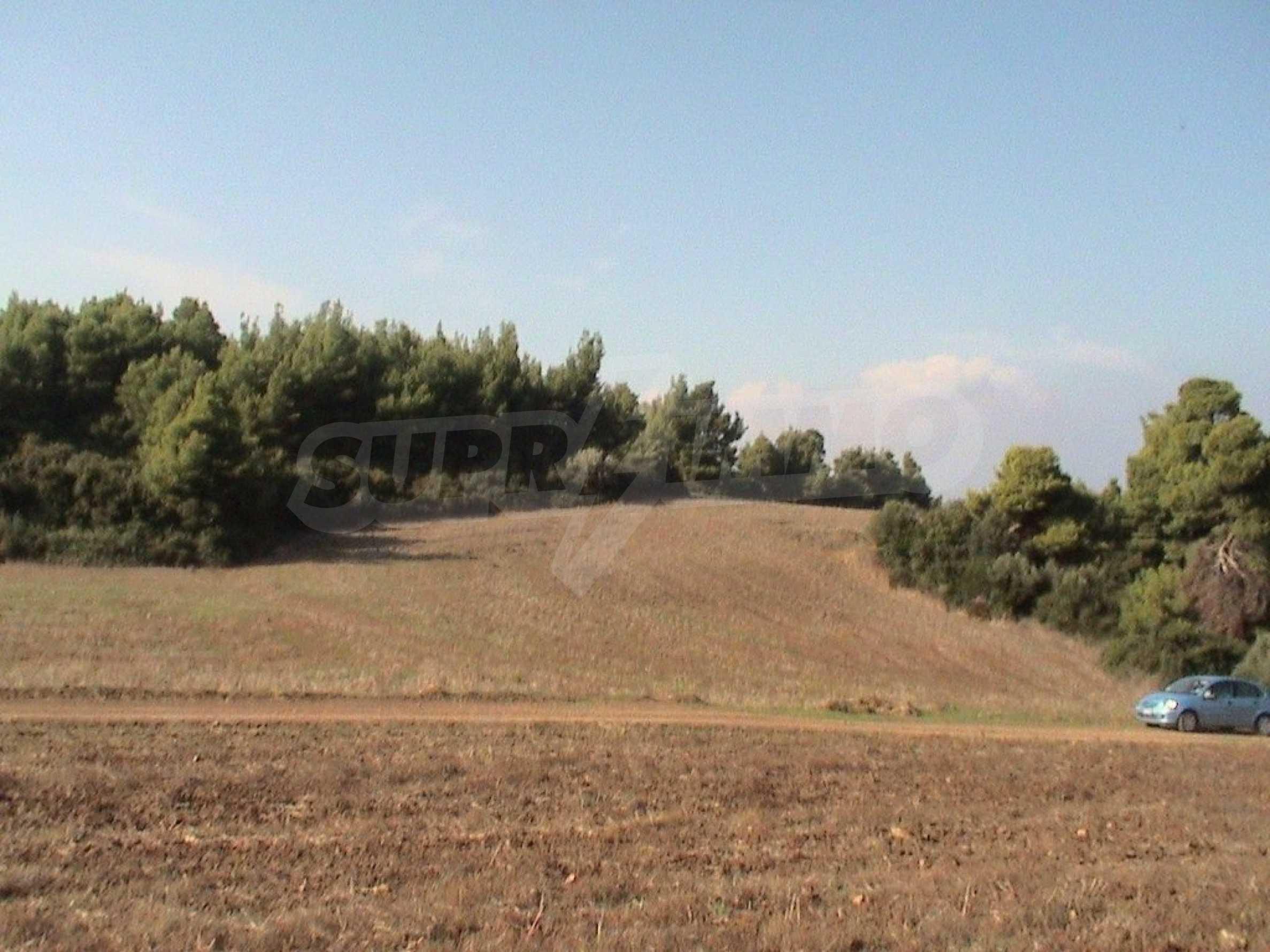 Земеделска земя  в  Палиури 1