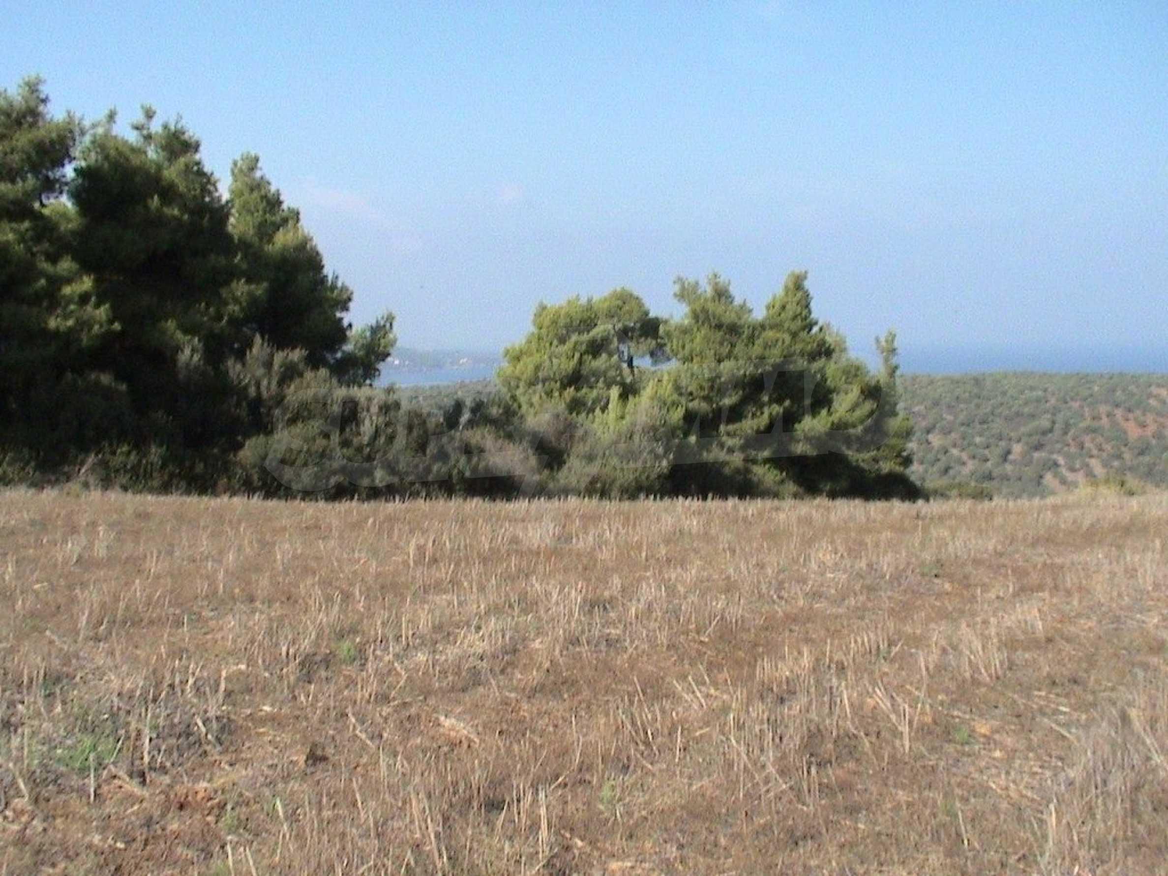 Земеделска земя  в  Палиури 2