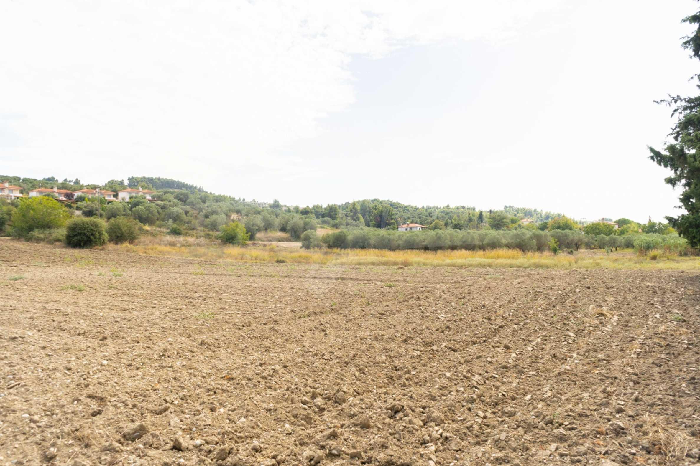 Земеделска земя  в  Посиди 11