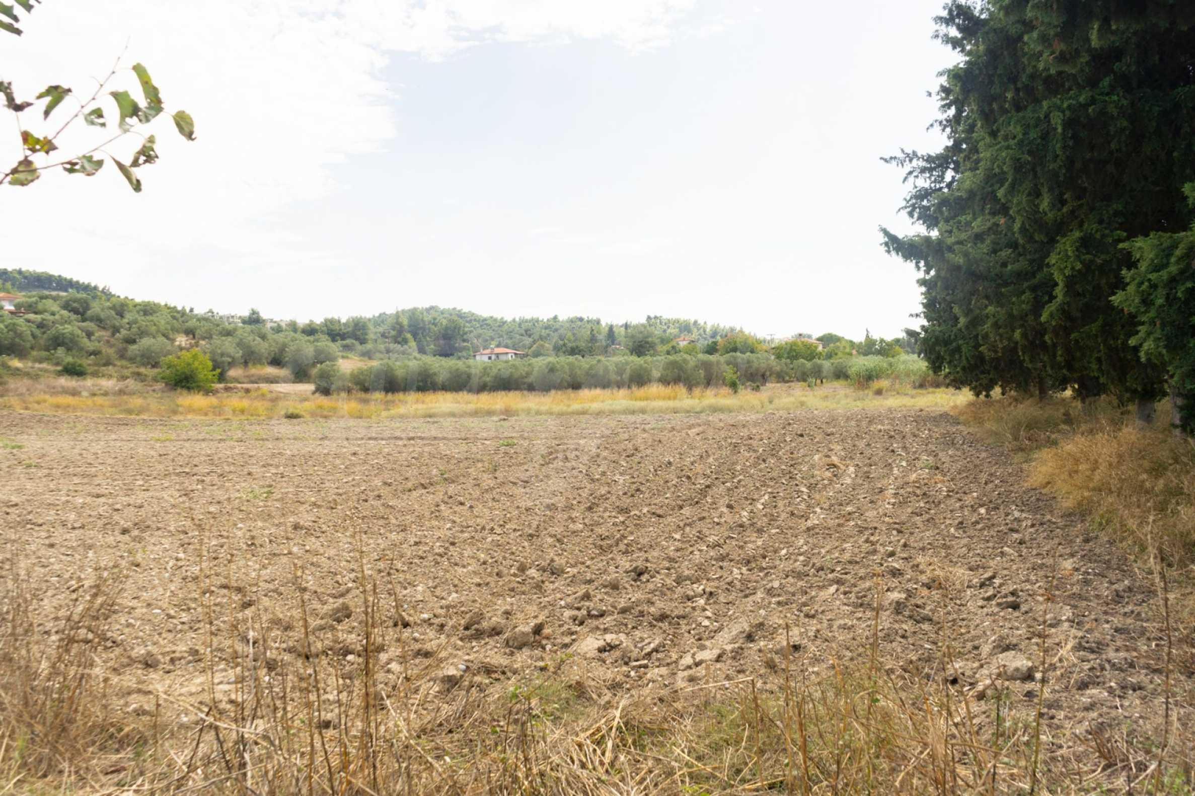 Земеделска земя  в  Посиди 12