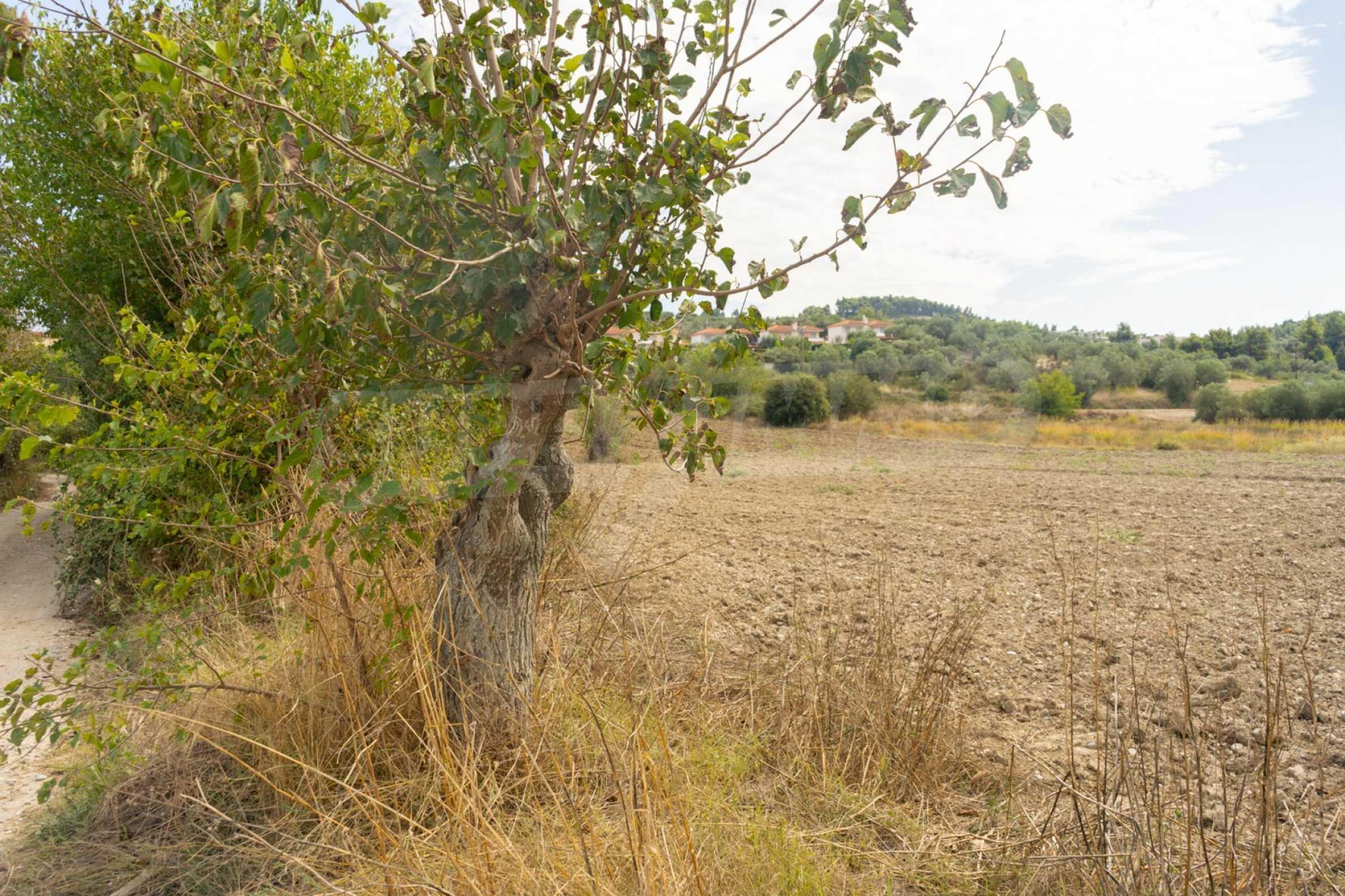 Земеделска земя  в  Посиди 14