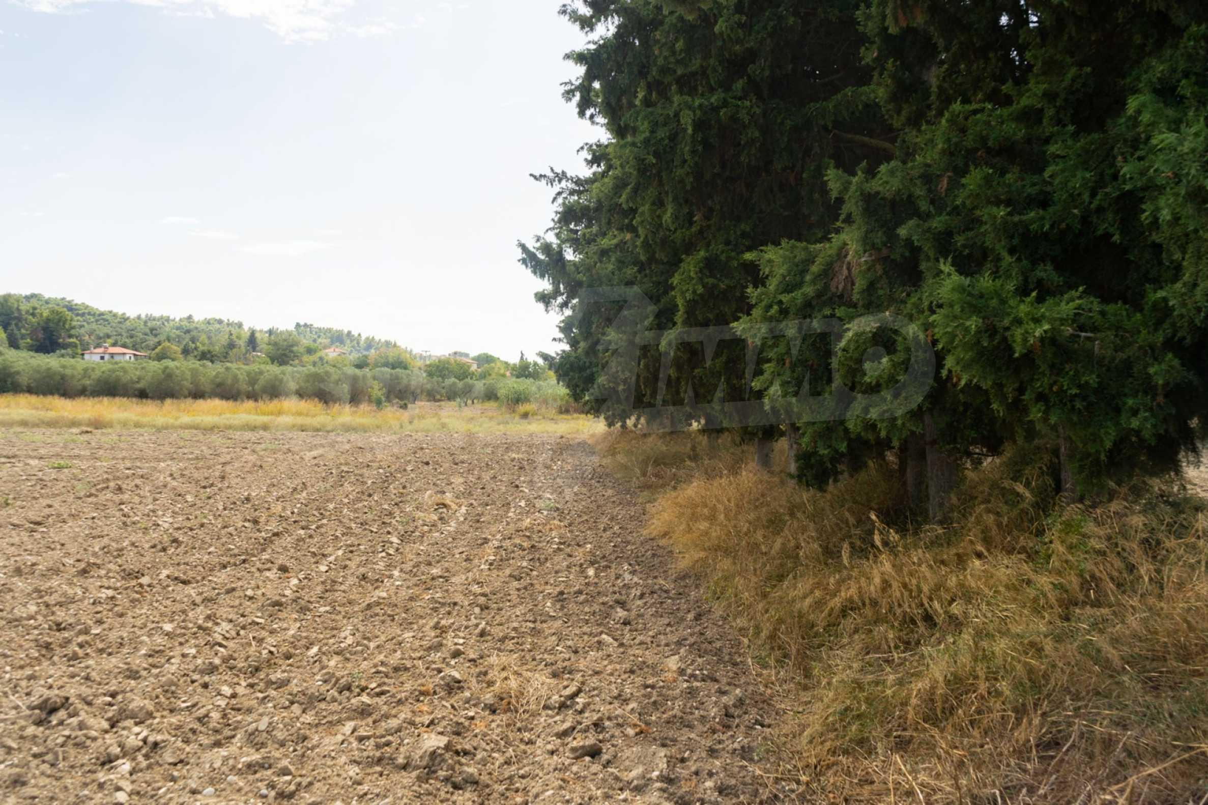 Земеделска земя  в  Посиди 17