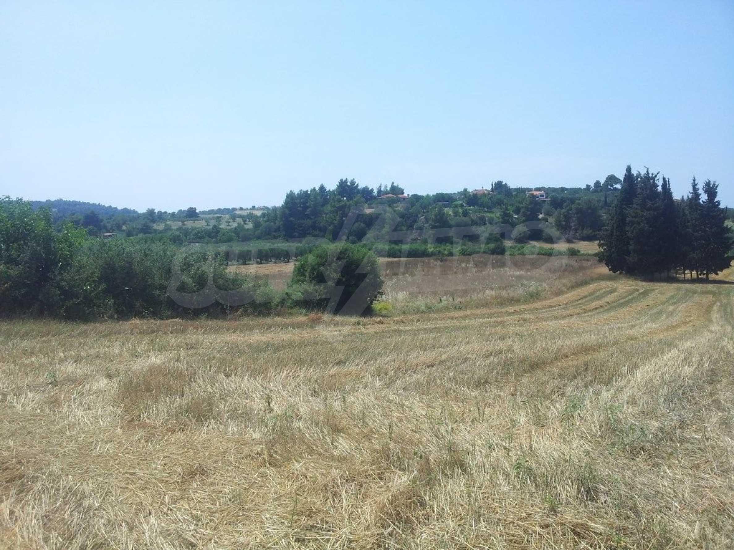 Земеделска земя  в  Посиди 1