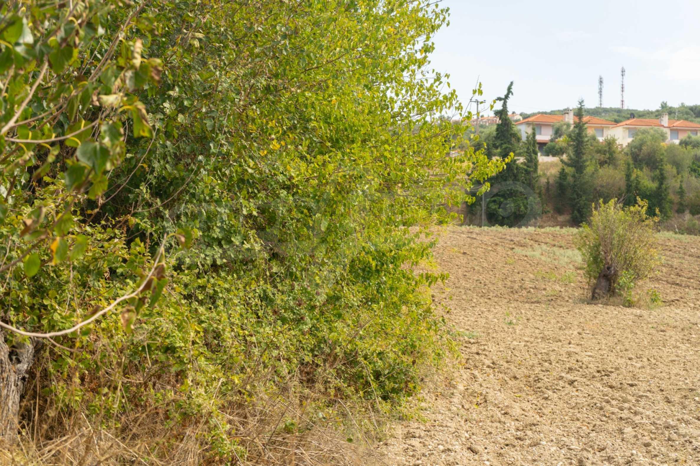 Земеделска земя  в  Посиди 19