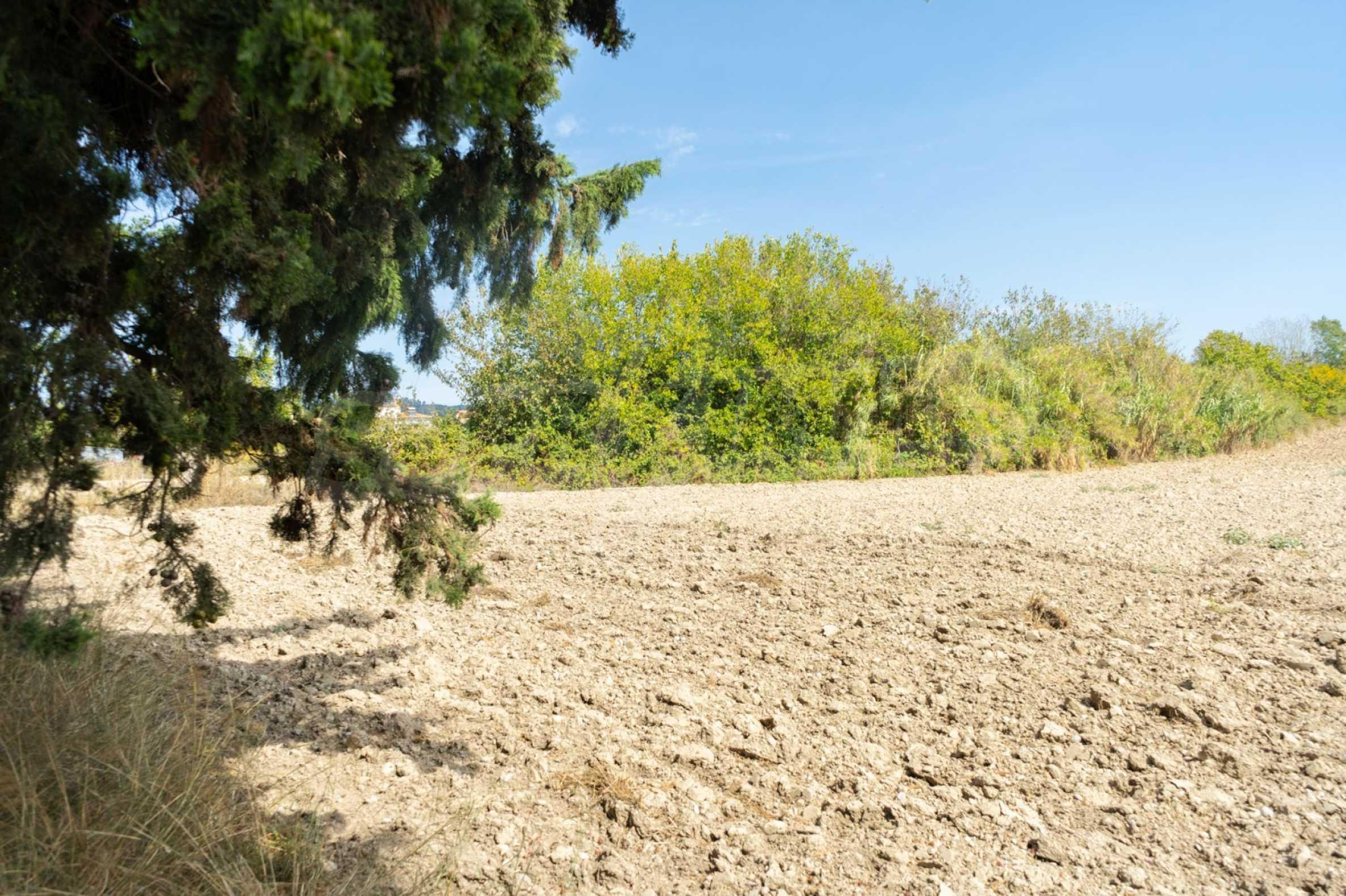 Земеделска земя  в  Посиди 25