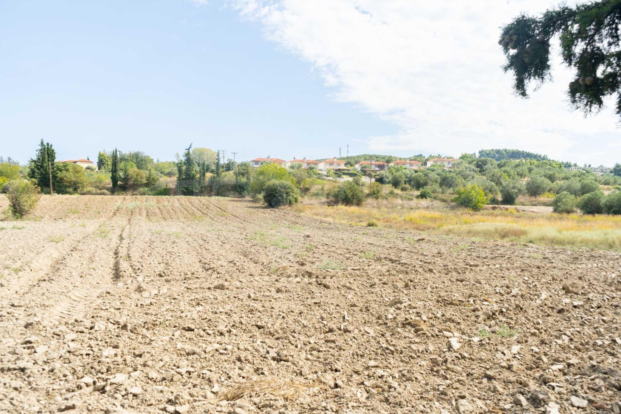 Земеделска земя  в  Посиди 28