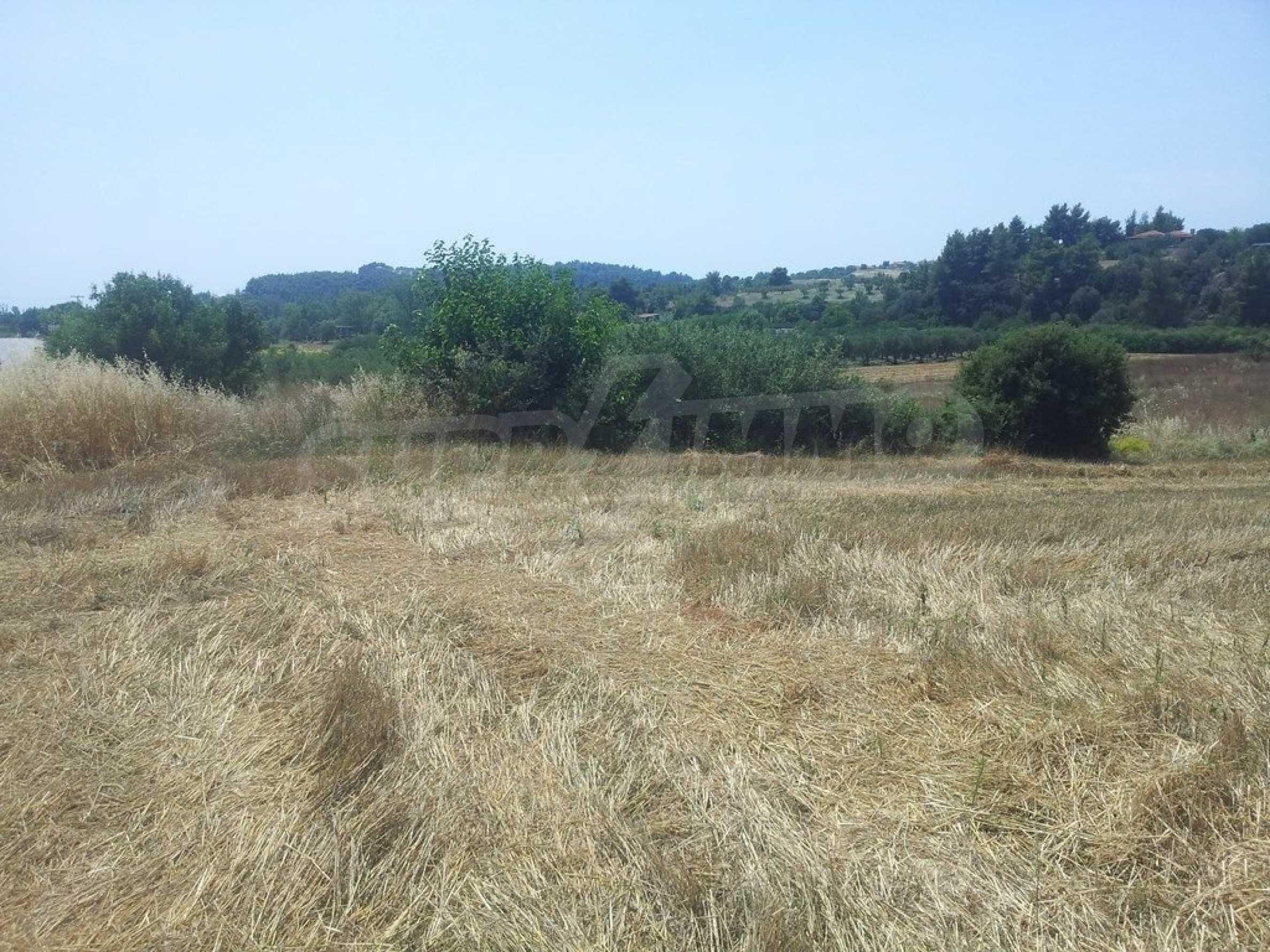 Земеделска земя  в  Посиди 3