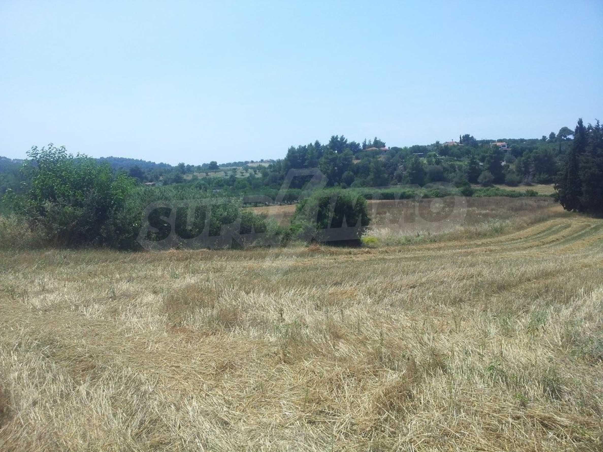 Земеделска земя  в  Посиди 5