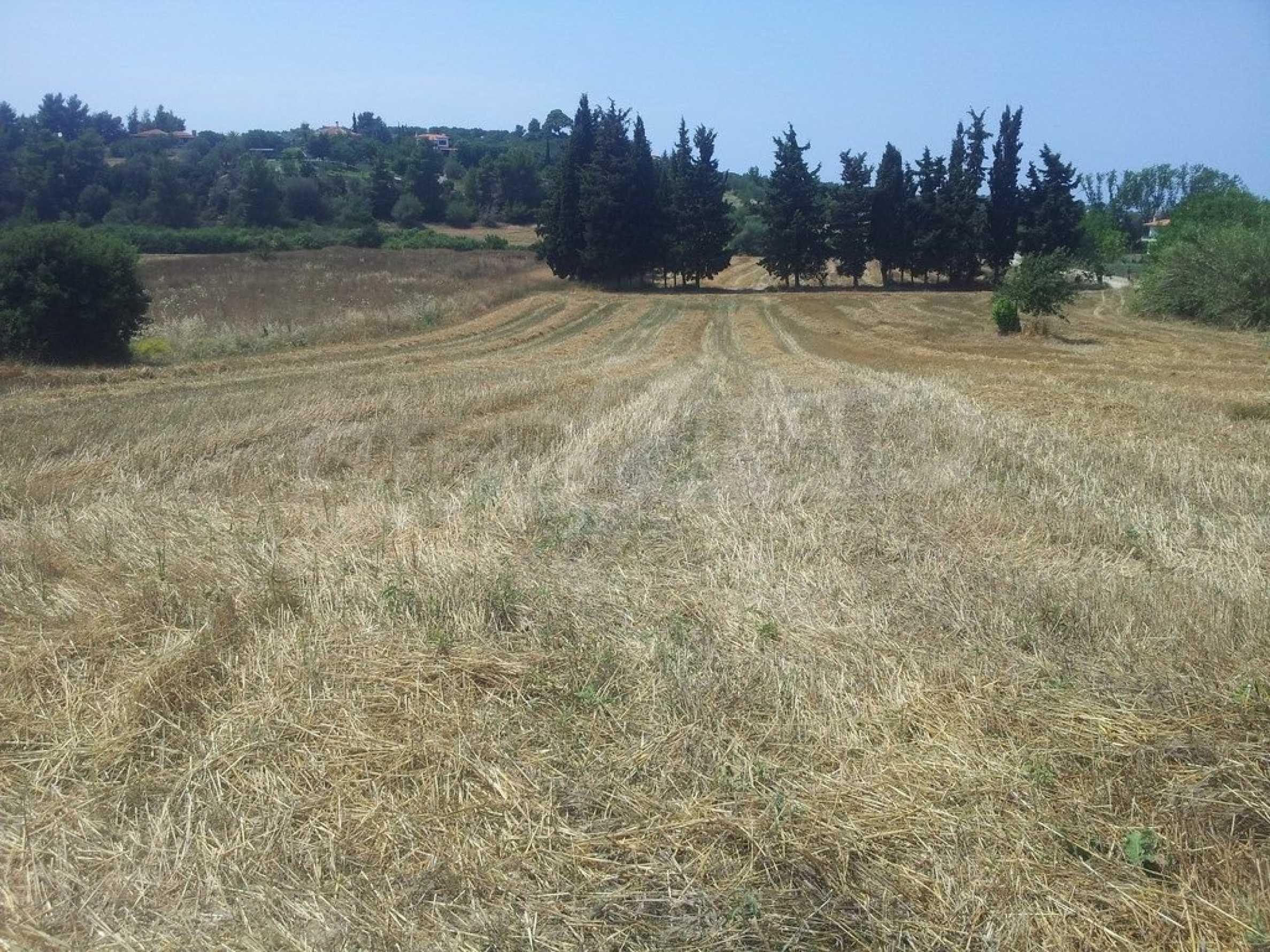 Земеделска земя  в  Посиди 6