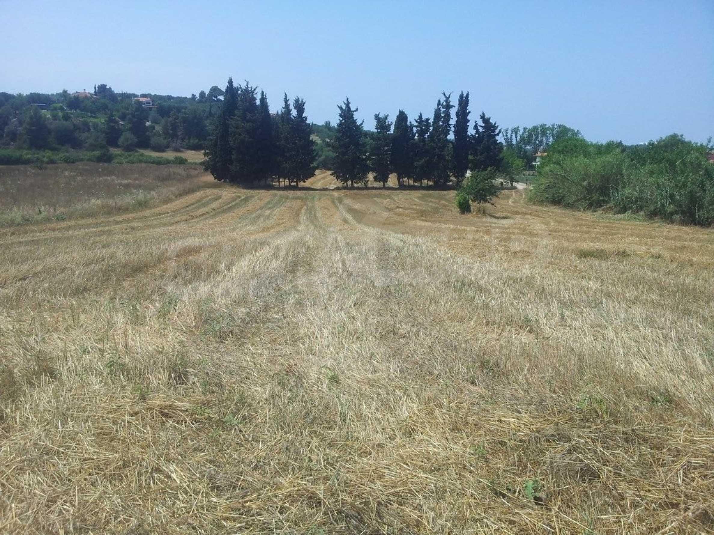 Земеделска земя  в  Посиди 7