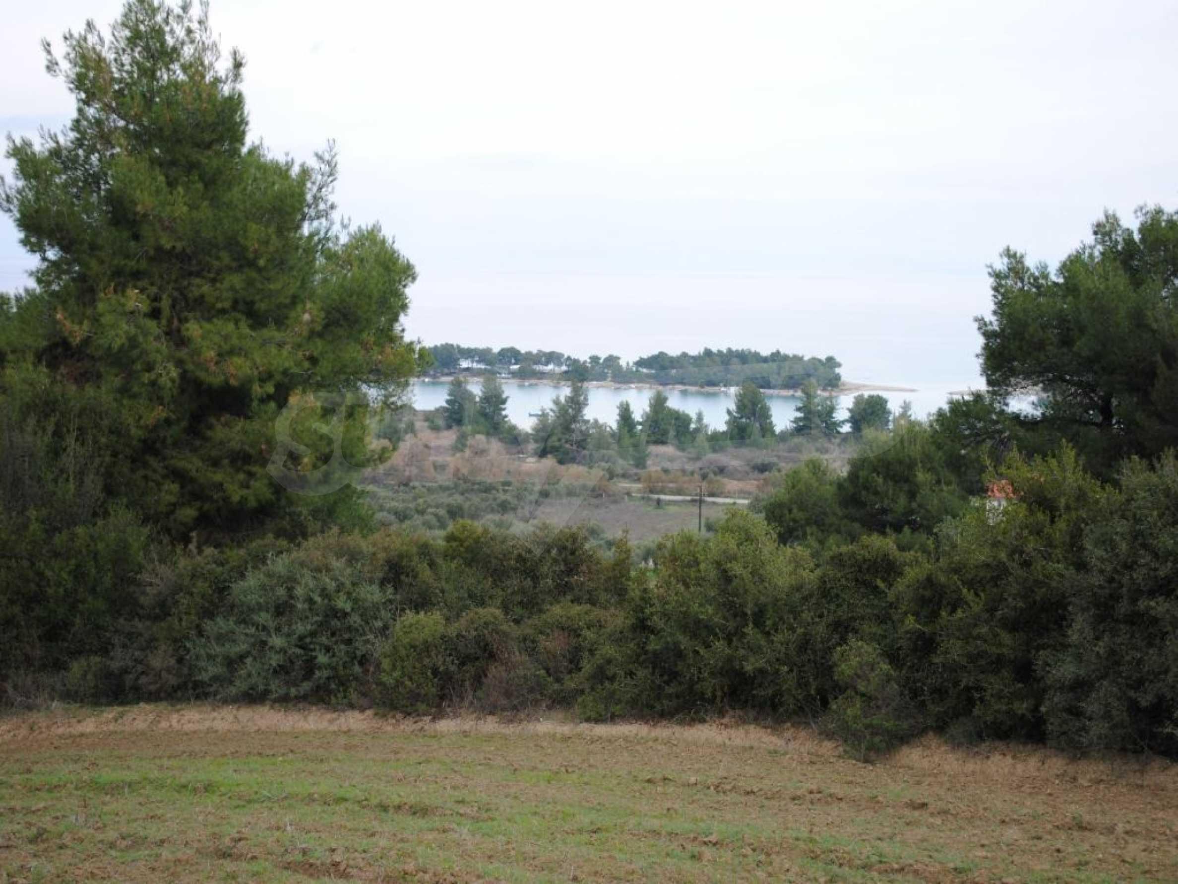 Земеделска земя  в  Пефкохори 2