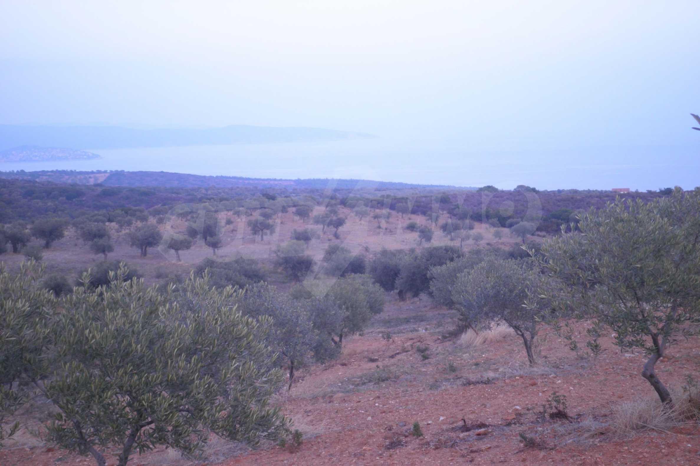 Земеделска земя  в  Акти Салоникю 1