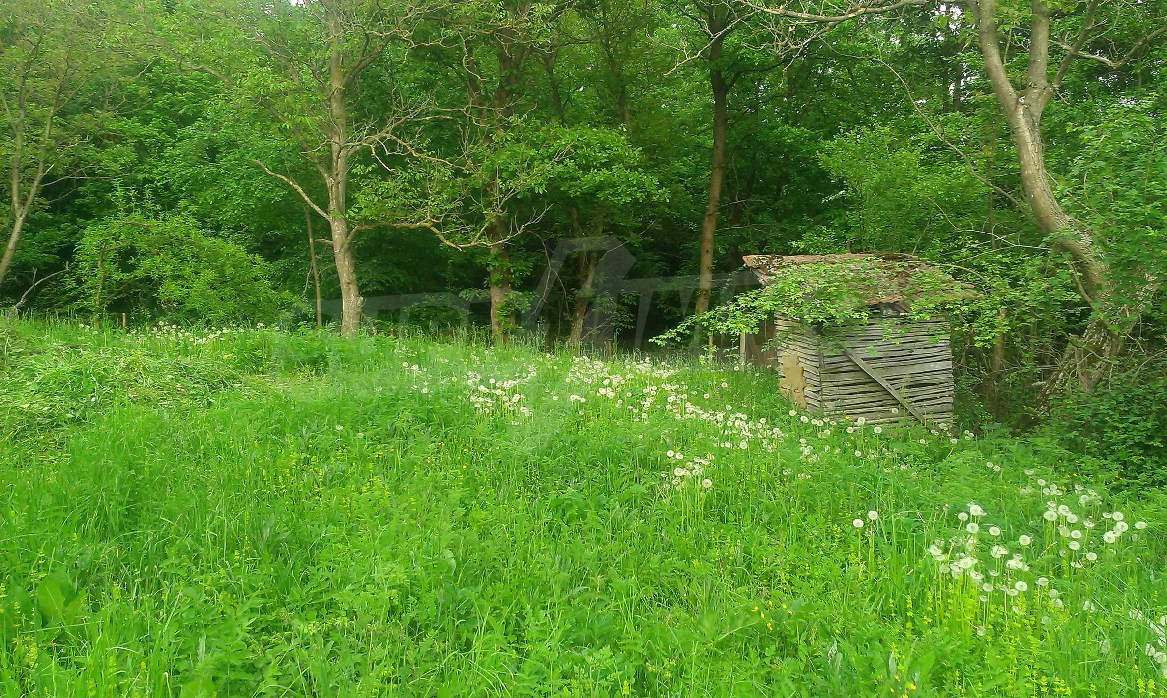 Двуетажна тухлена къща на 40 км от Велико Търново  22