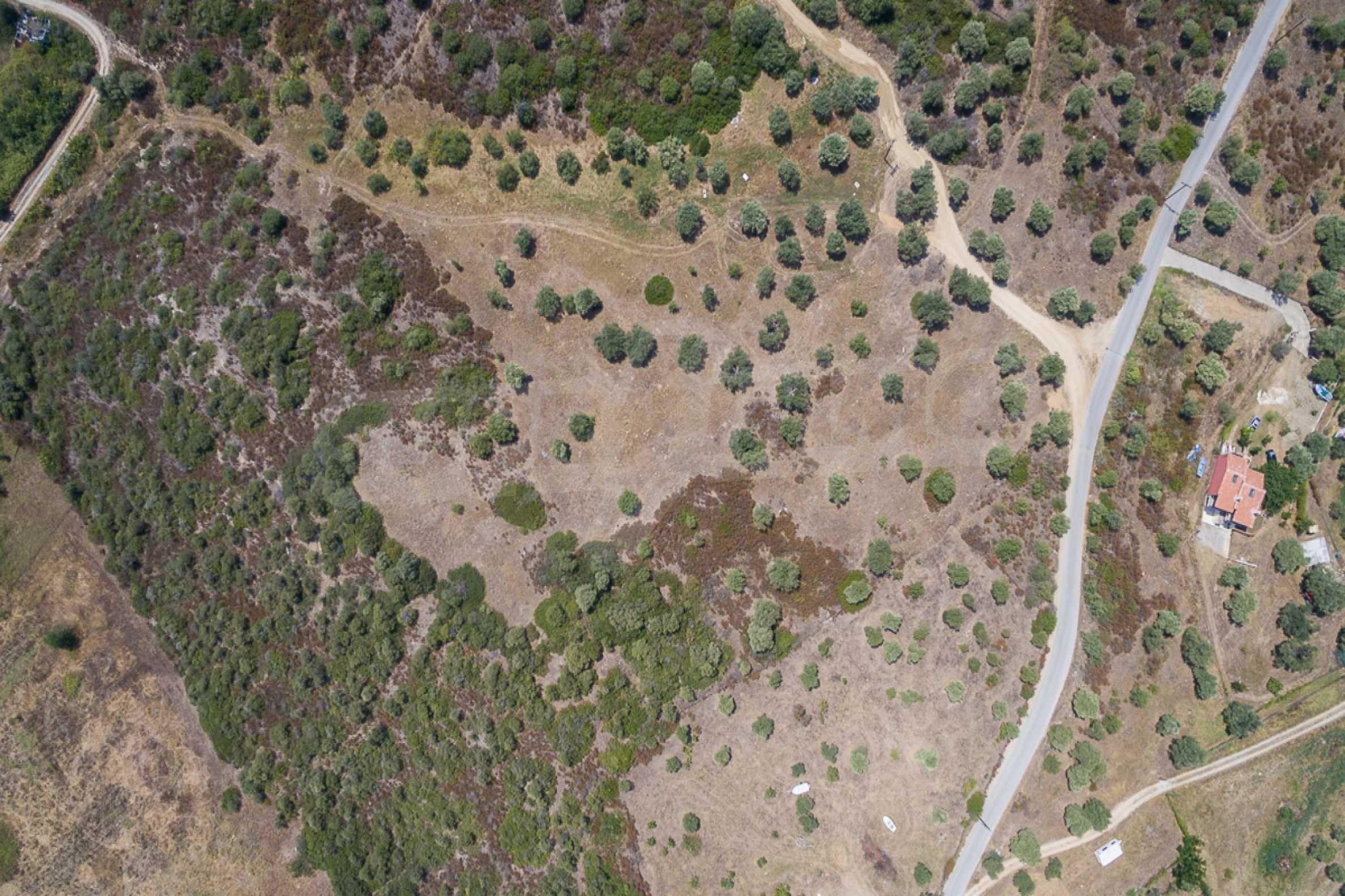 Земеделска земя  в  Остров Амулиани 18