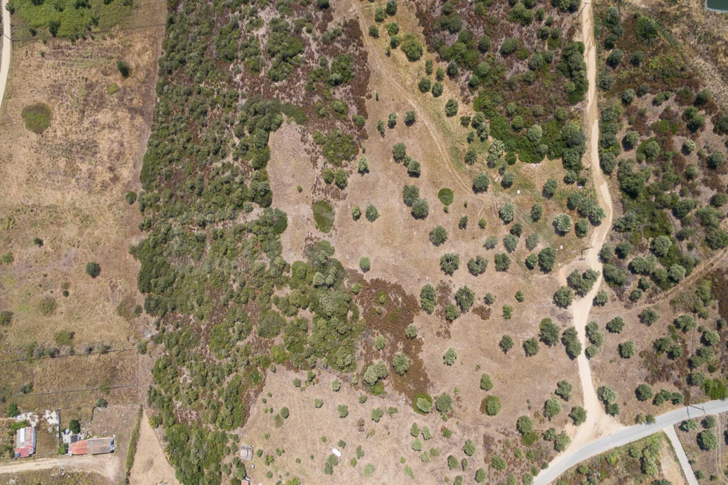 Земеделска земя  в  Остров Амулиани 19