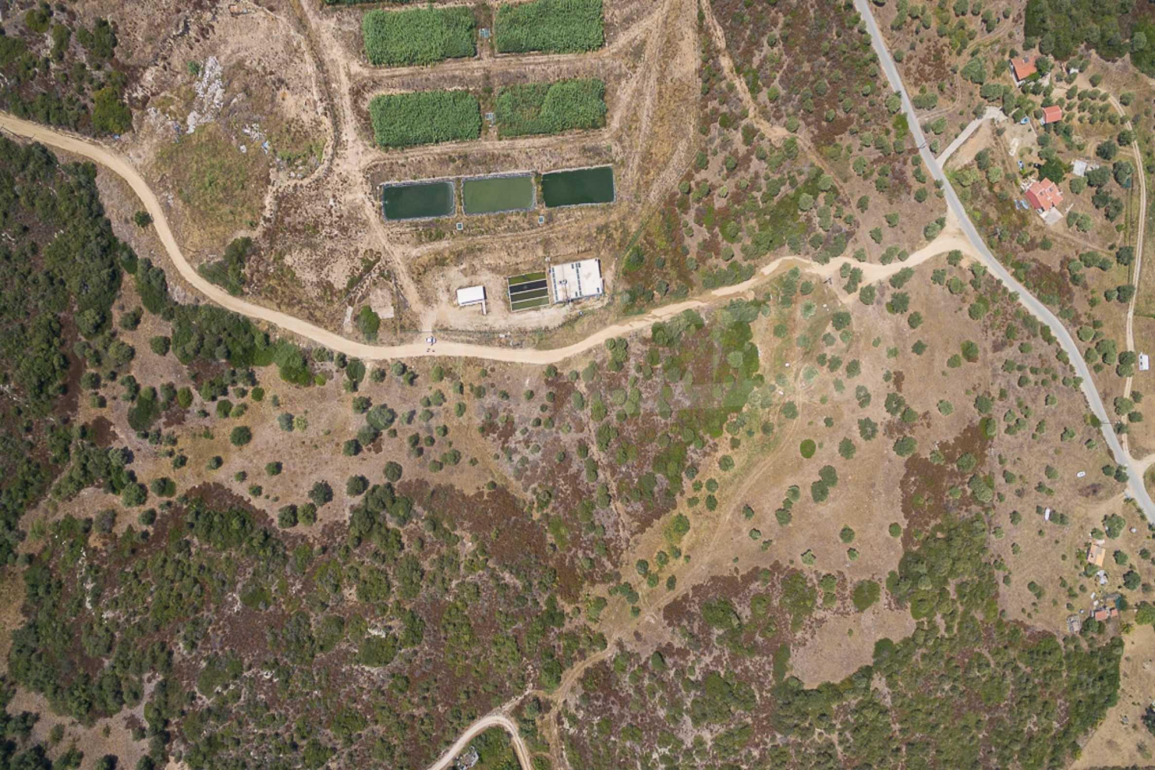 Земеделска земя  в  Остров Амулиани 20