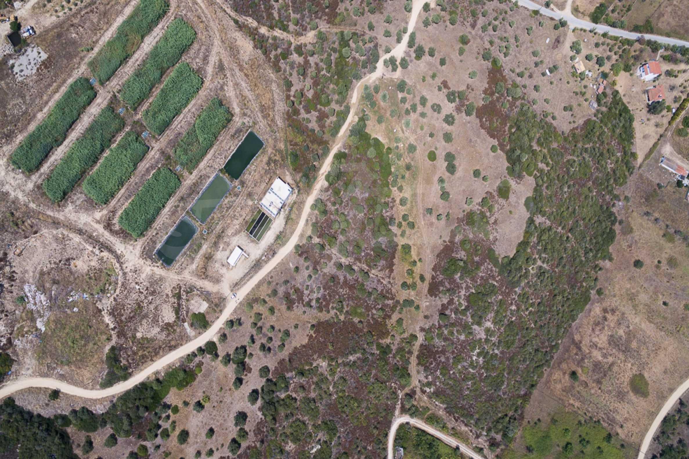 Земеделска земя  в  Остров Амулиани 21