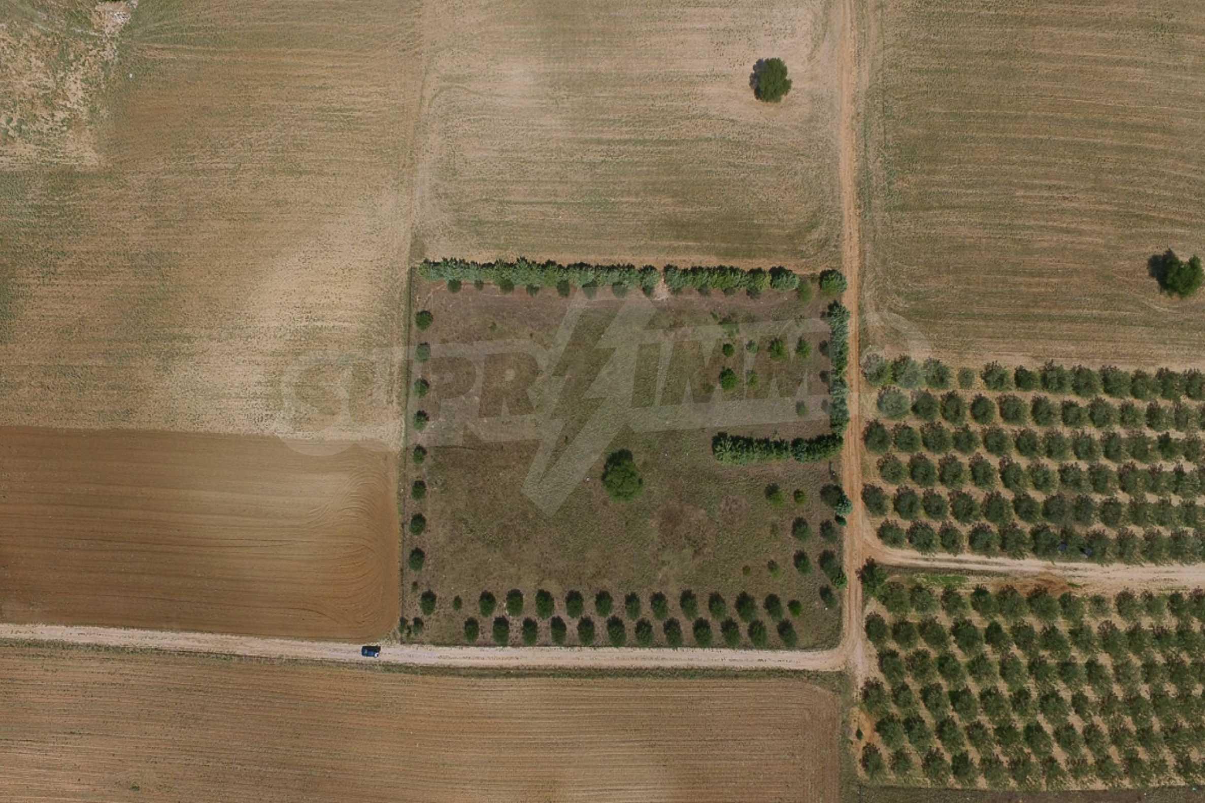 Земеделска земя  в  Tagarades 12