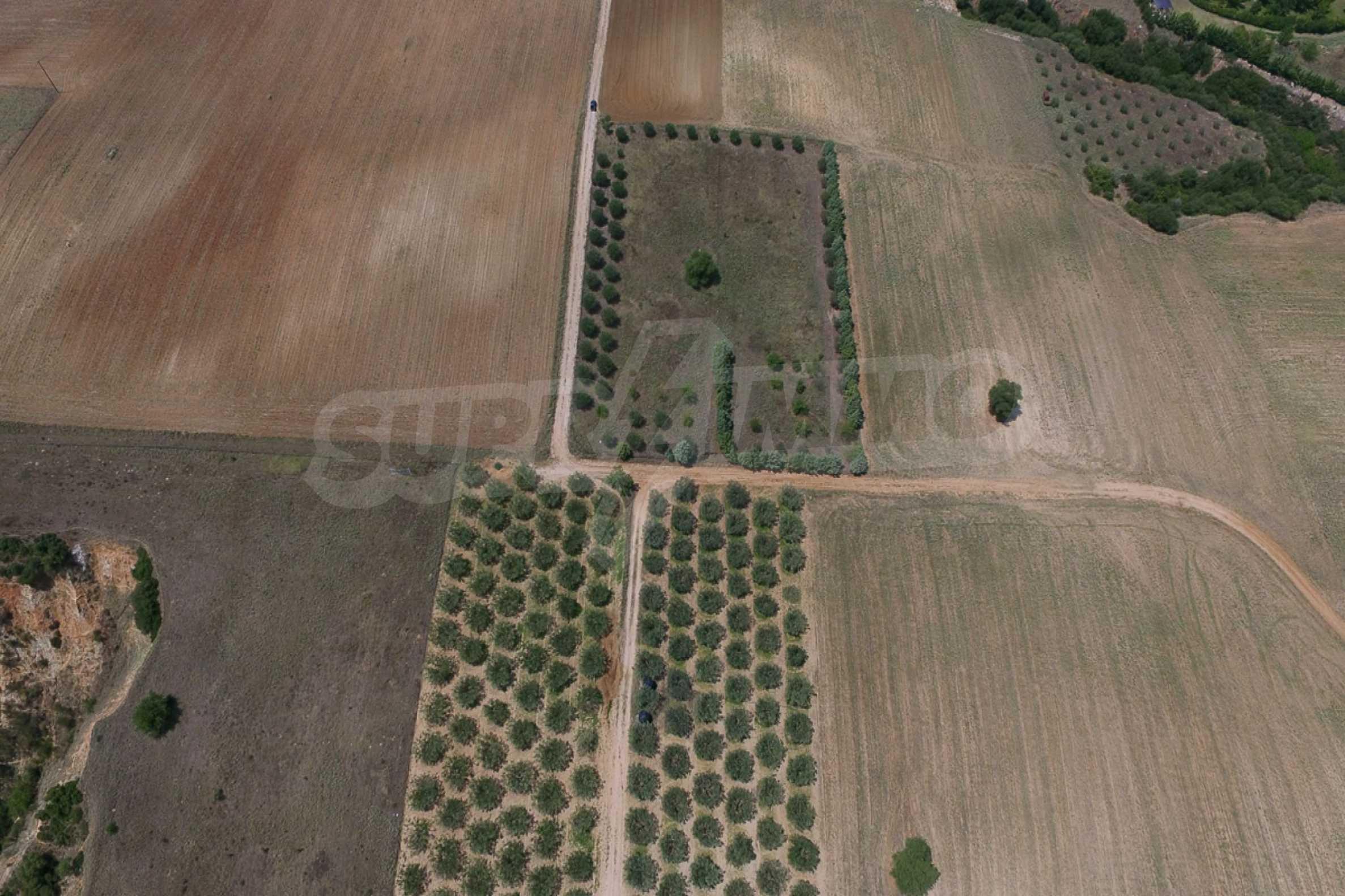 Земеделска земя  в  Tagarades 18