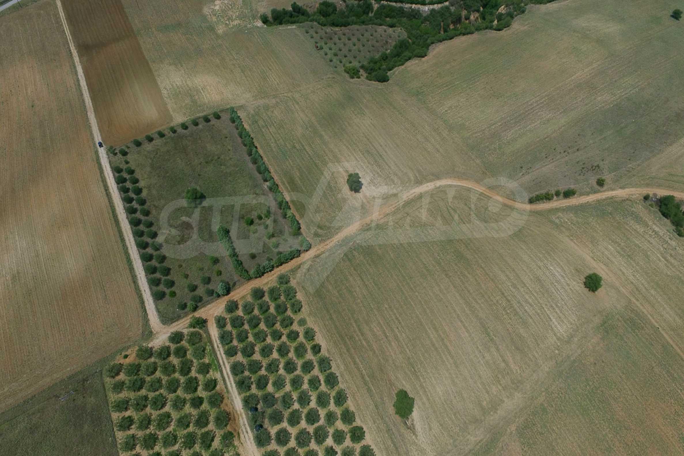 Земеделска земя  в  Tagarades 19