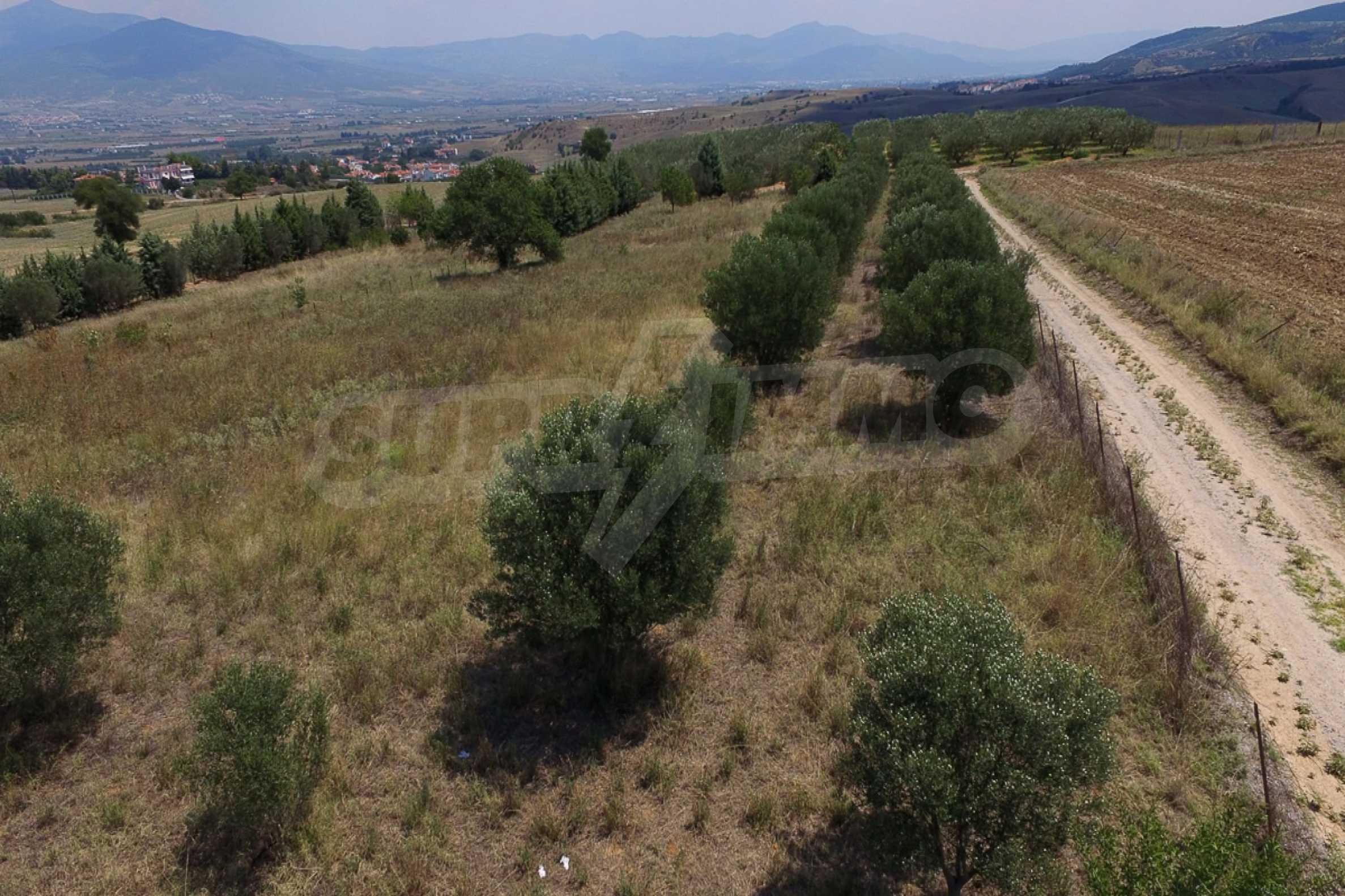 Земеделска земя  в  Tagarades 24