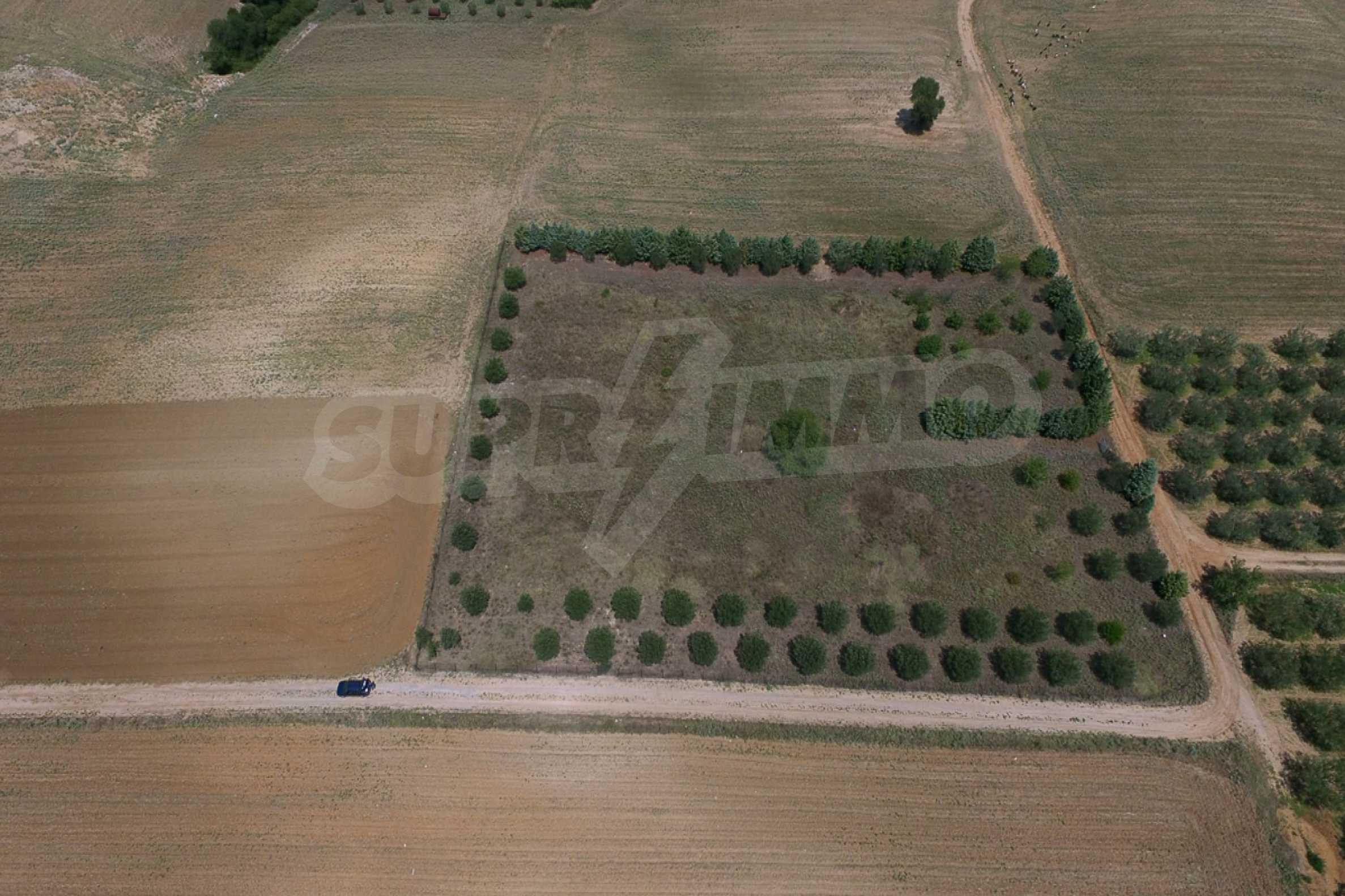 Земеделска земя  в  Tagarades 2