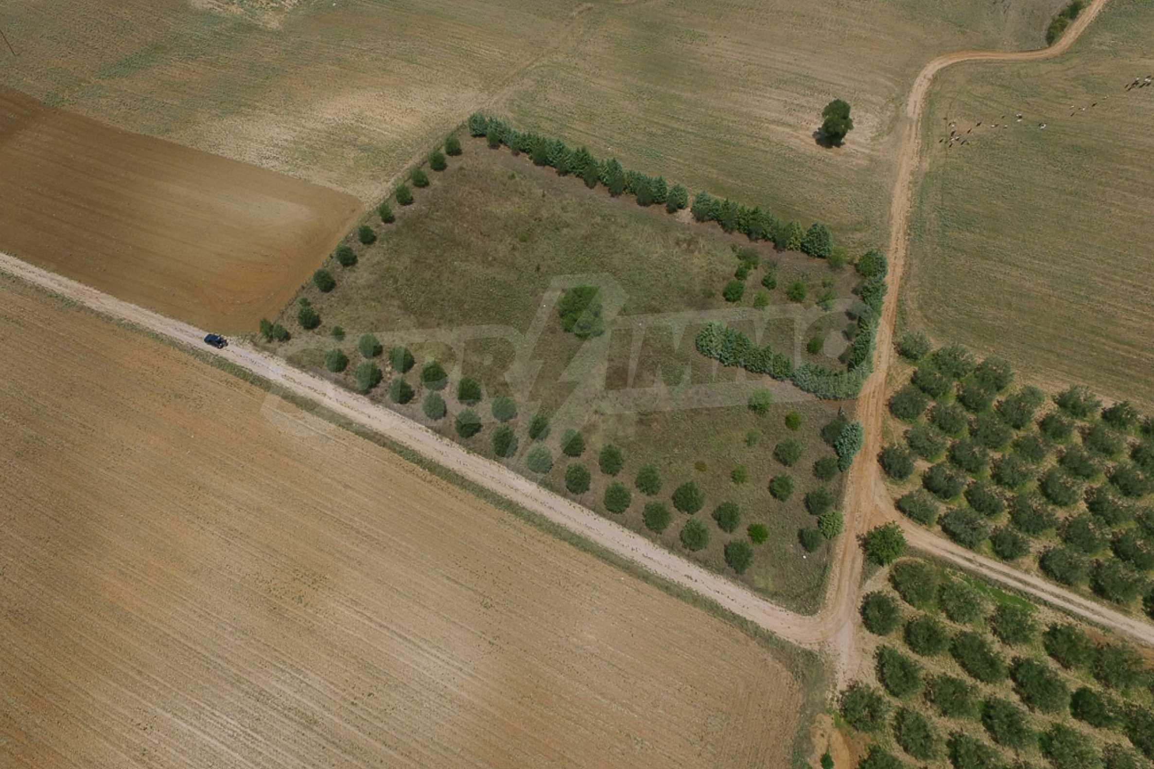 Земеделска земя  в  Tagarades 4